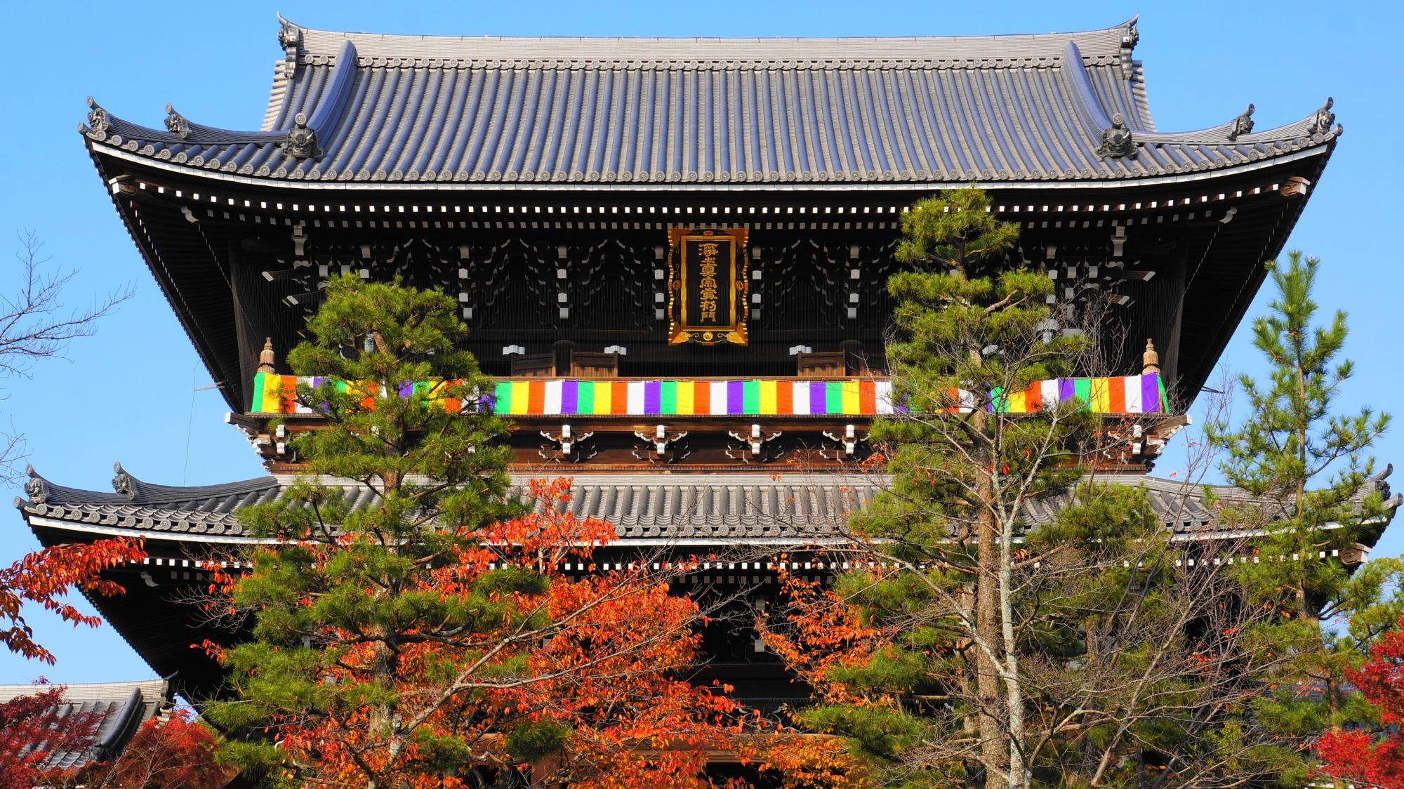 金戒光明寺の山門と紅葉