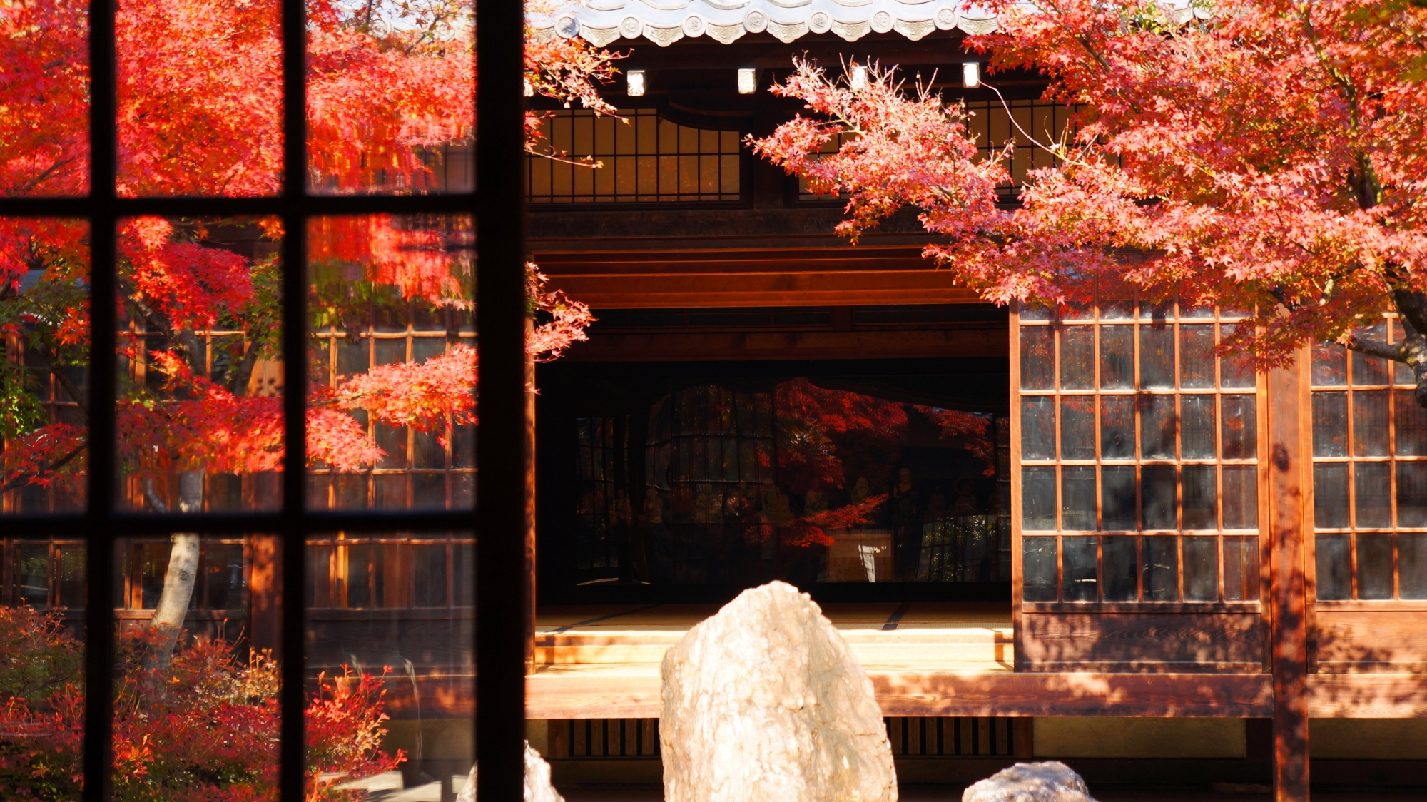 Gorgeous autumnal leaves of Kennin-ji Temple in Kyoto