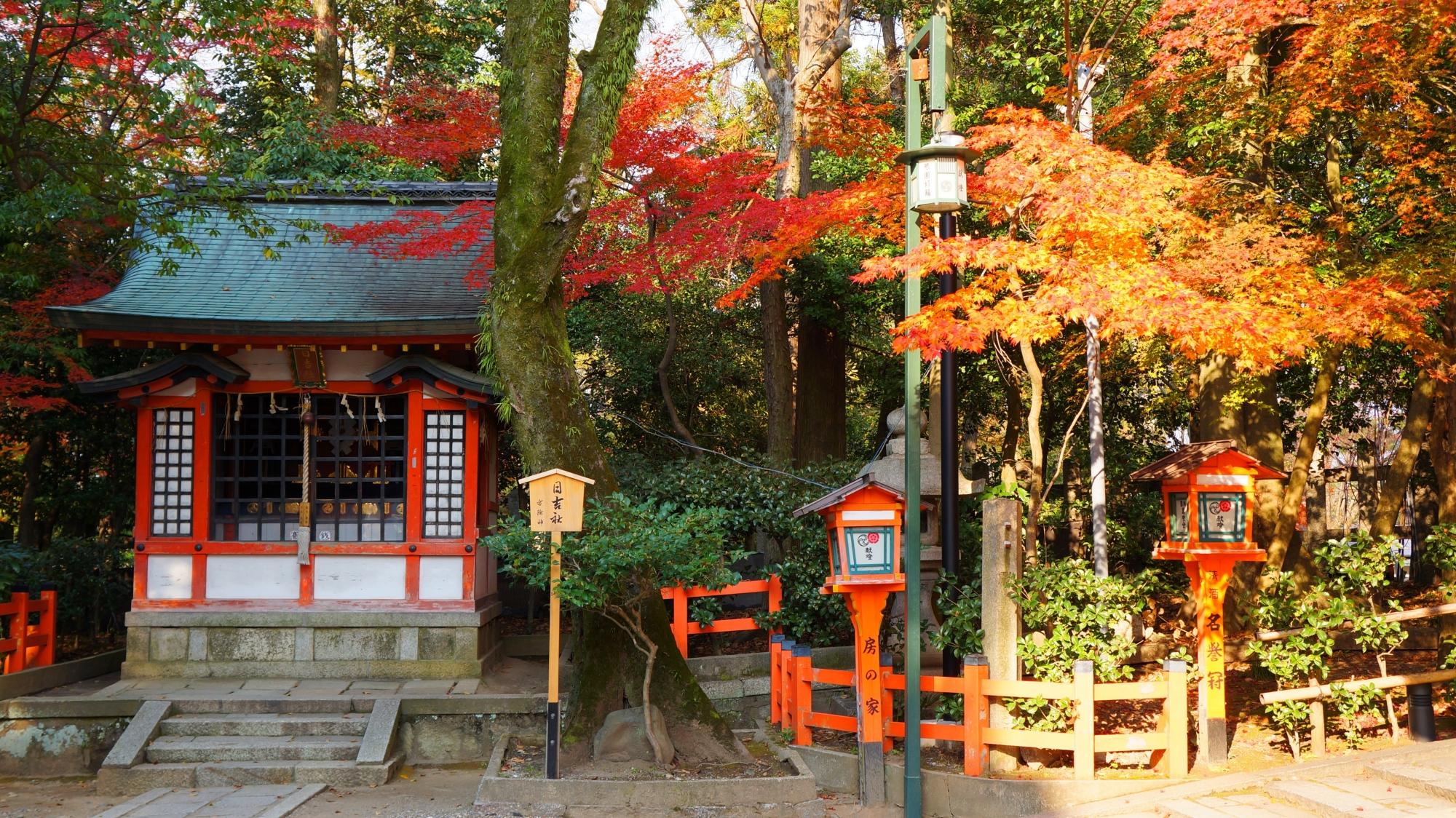 日吉社前の見ごろの美しい紅葉