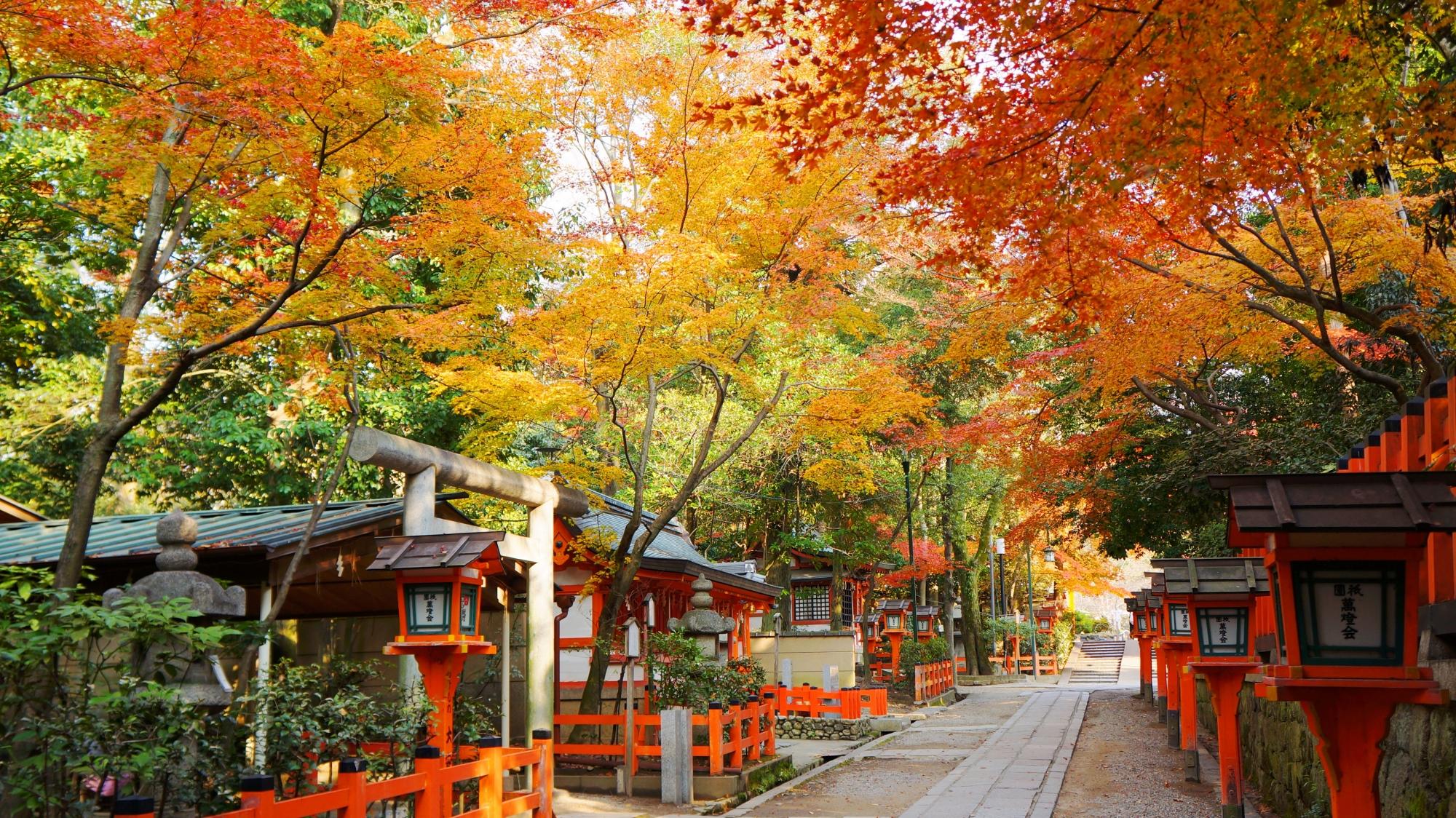 八坂神社の本殿裏の参道の風情ある紅葉