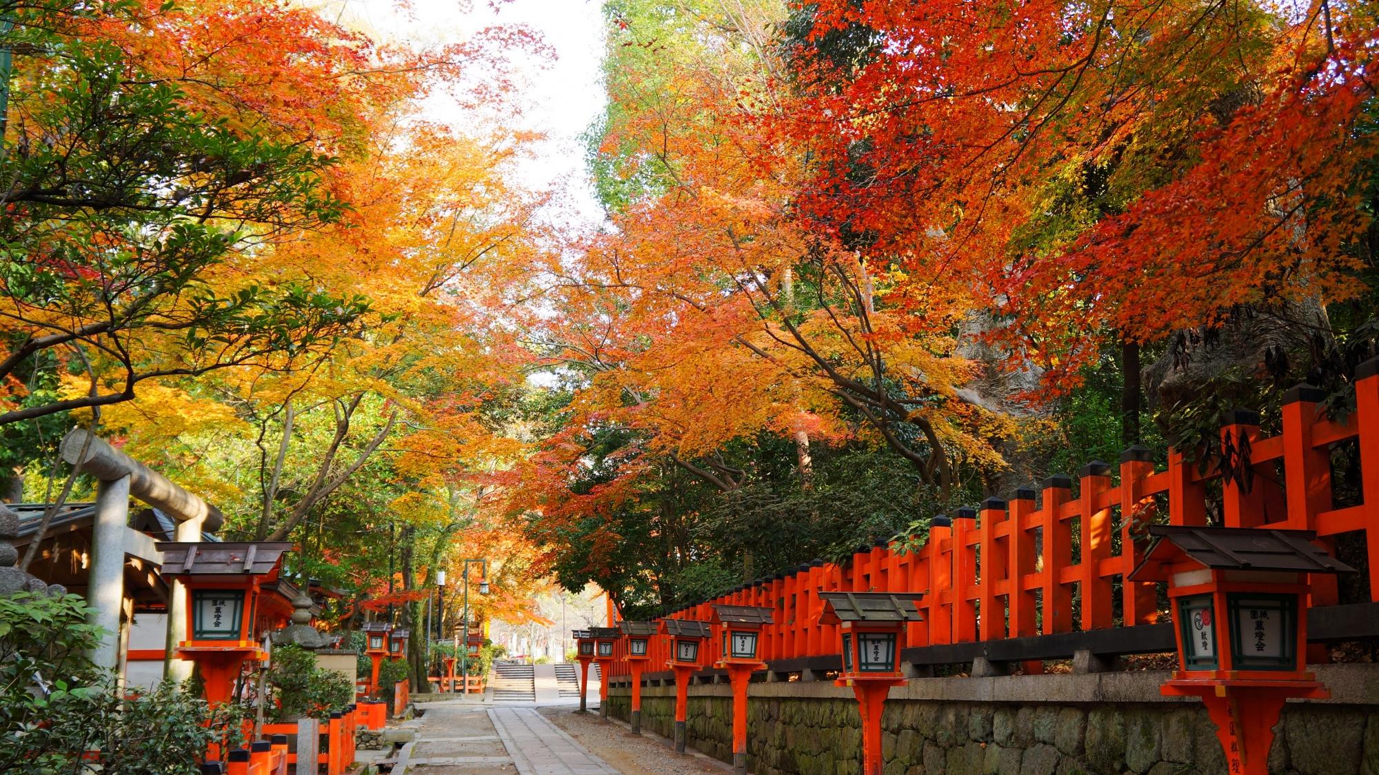 八坂神社の本殿裏の参道の紅葉