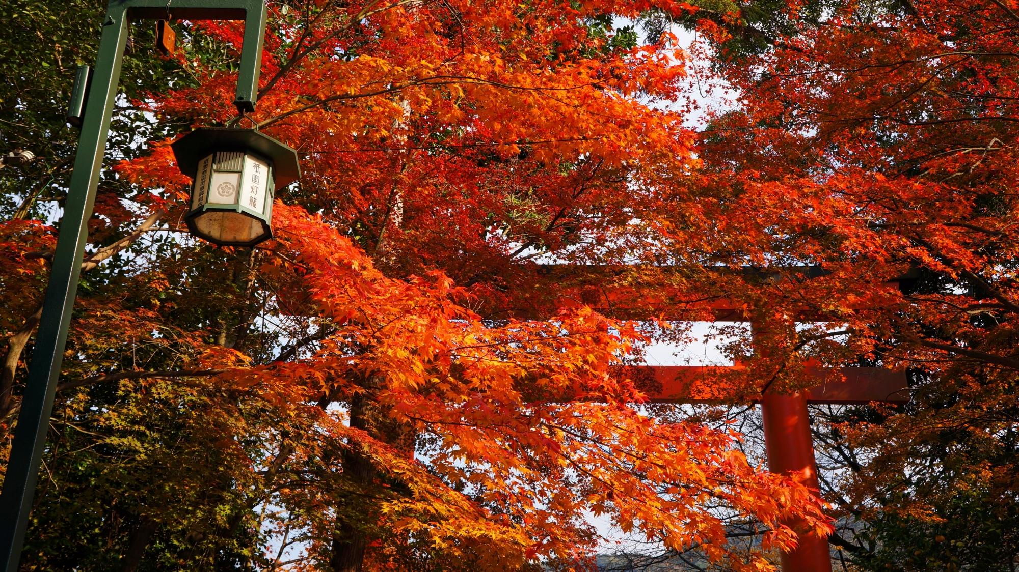八坂神社の素晴らしい紅葉と情景