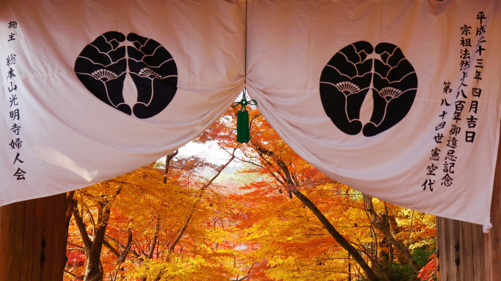 寺紋の奥に広がる華やかな紅葉の世界
