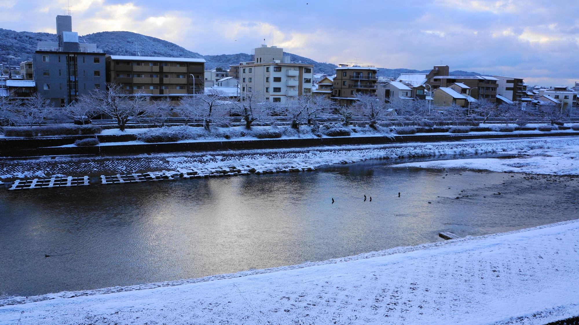川原も白く雪化粧した鴨川