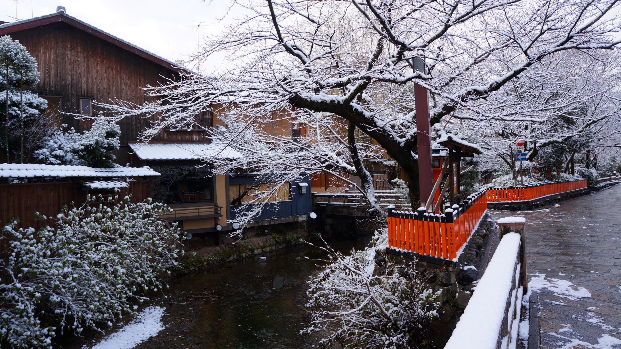 自然の作り出す見事な雪の祇園白川