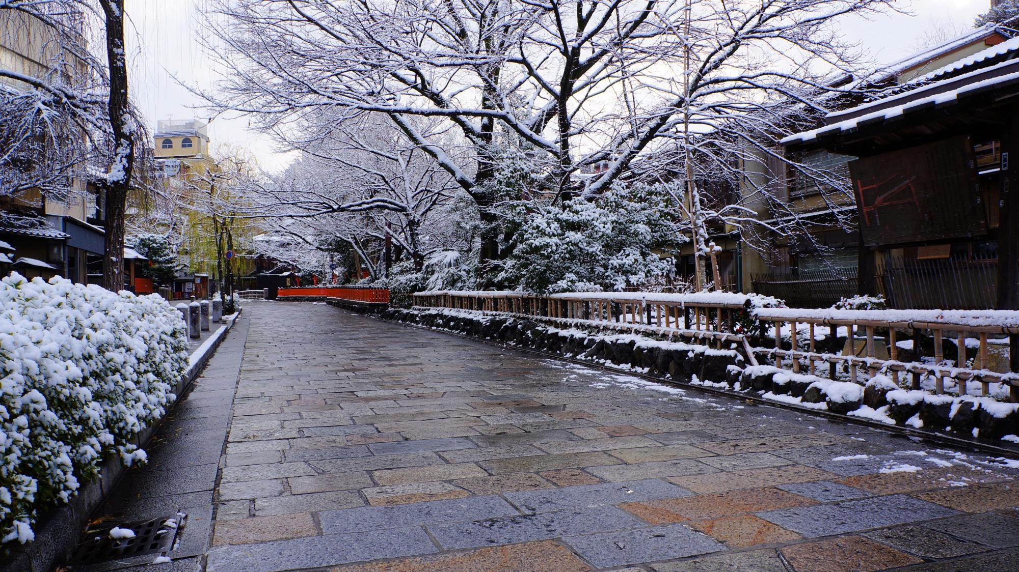美しくうっすらと雪化粧した祇園白川