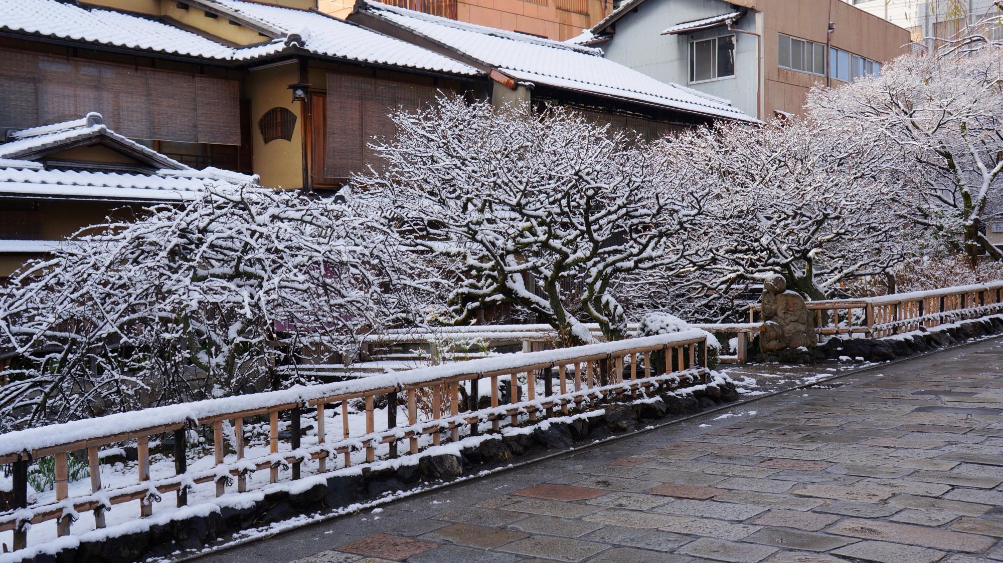 芸術的な雪の花と風情ある街並み