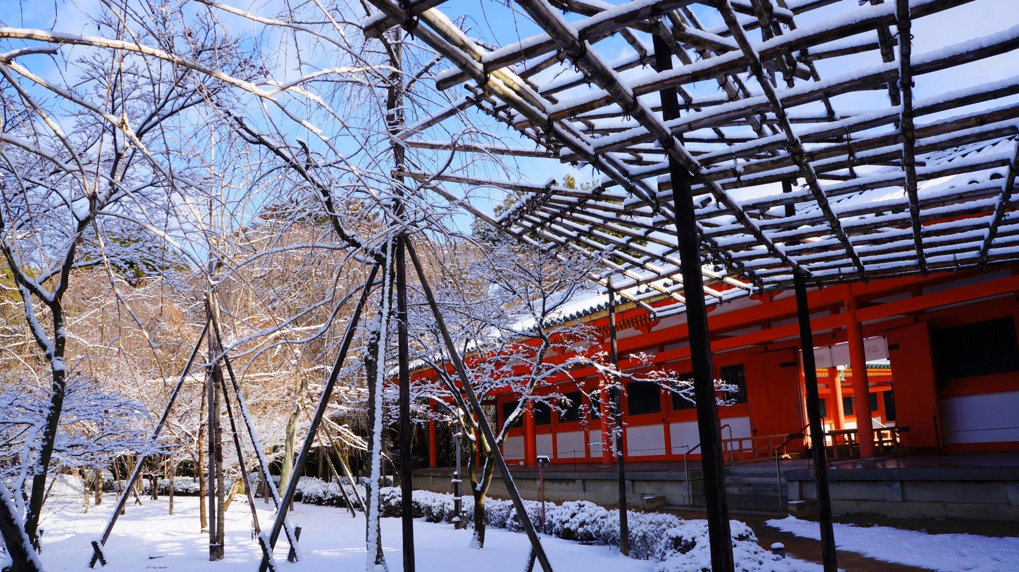 青空が見え日が当たると直ぐになくなってしまう京都の行き
