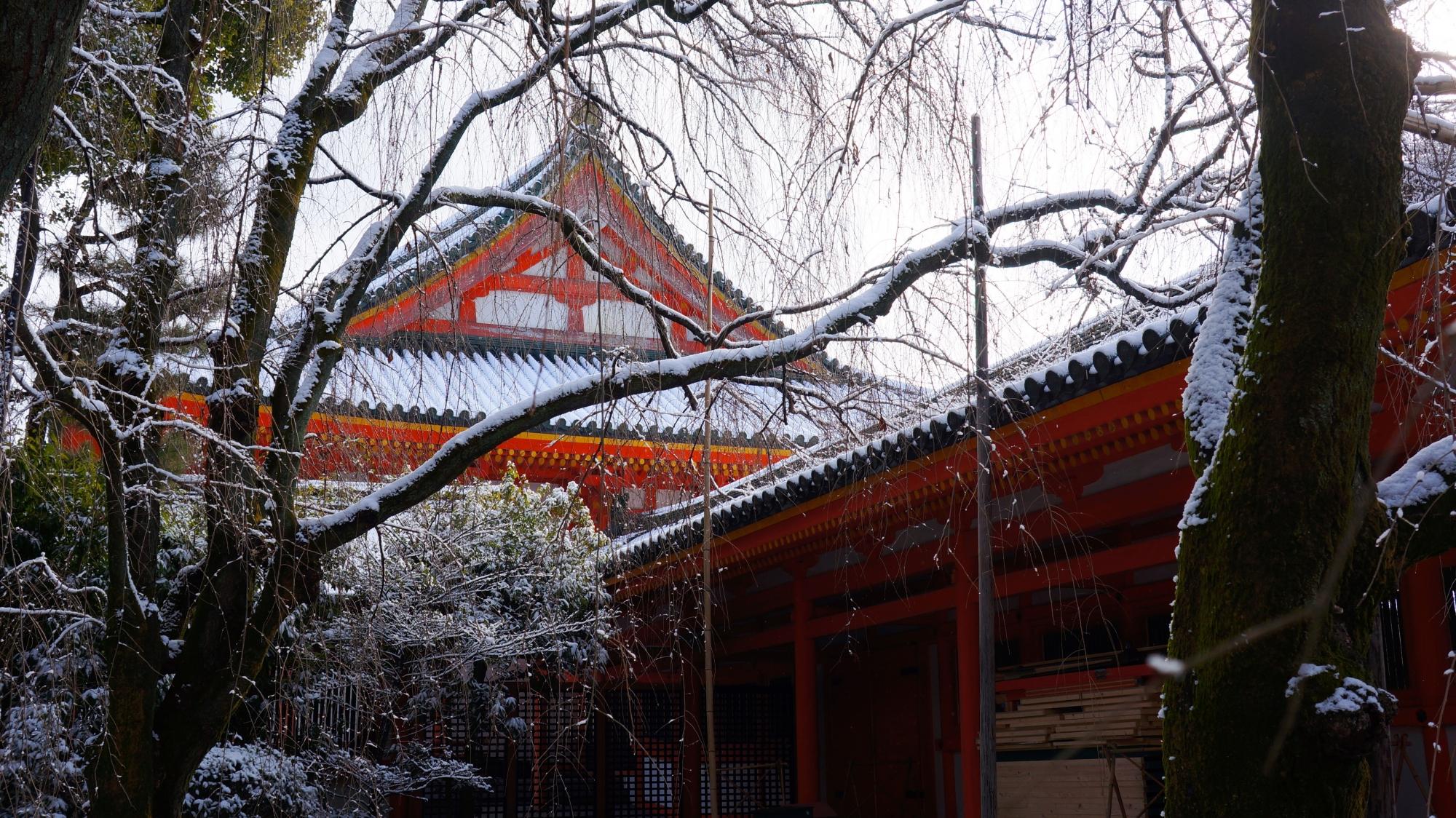 うっすらと雪化粧した平安神宮神苑