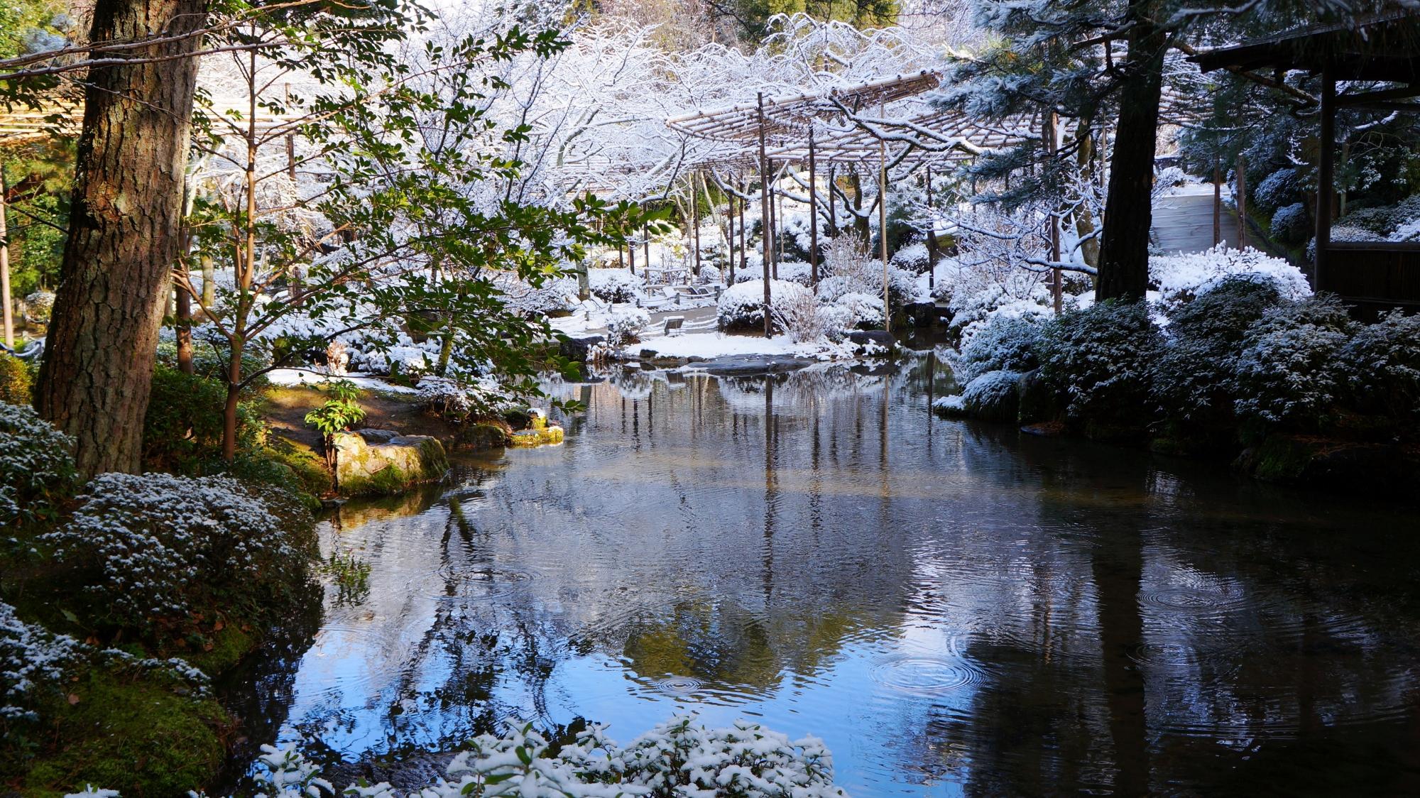 水面に青空と雪景色が映る平安神宮神苑