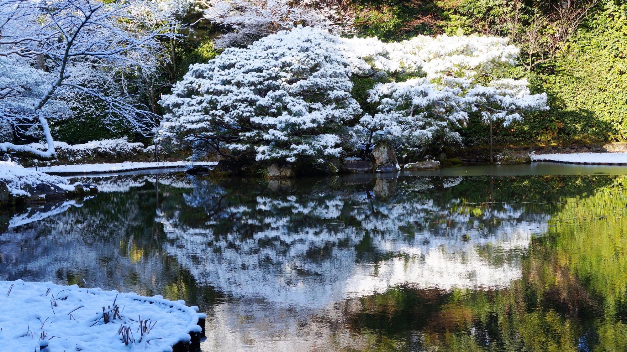 素晴らしい雪景色の水鏡