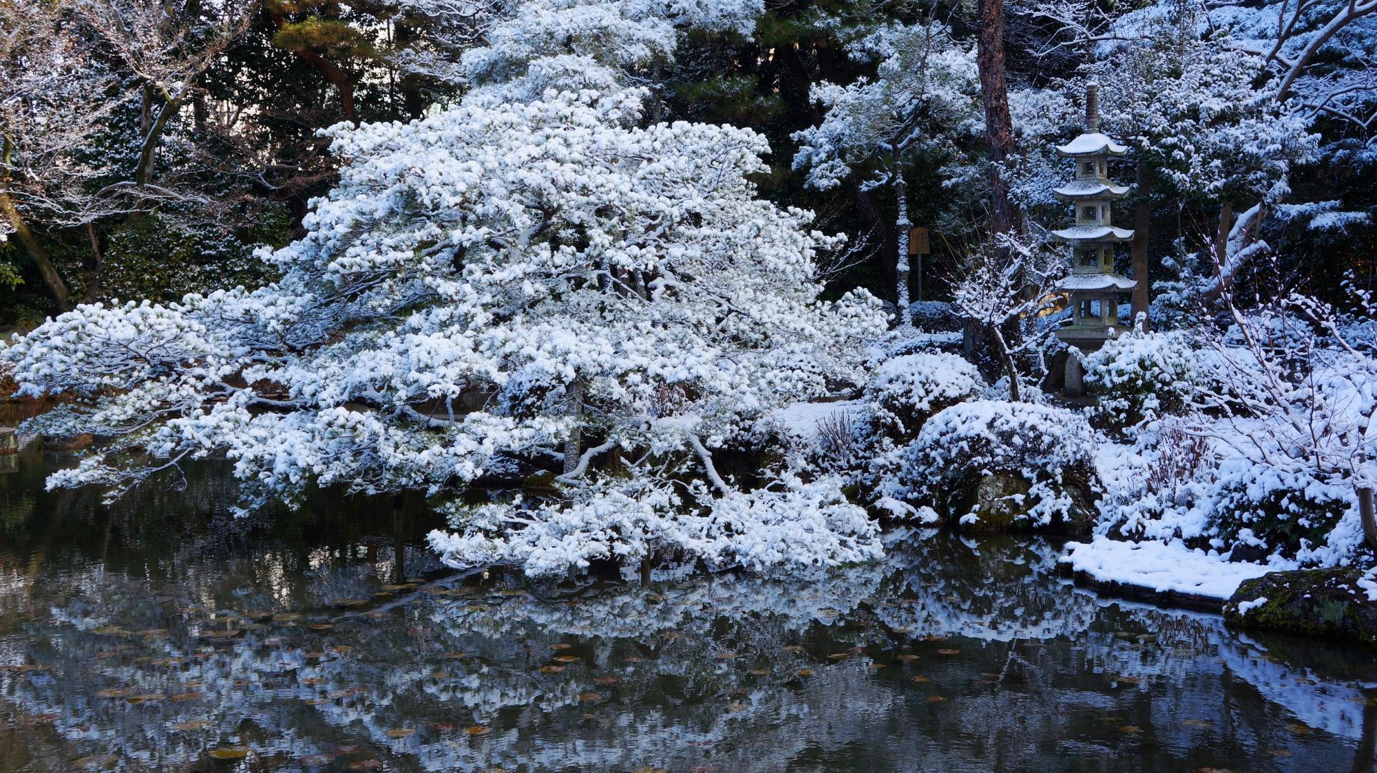 息をのむ美しい雪の水鏡