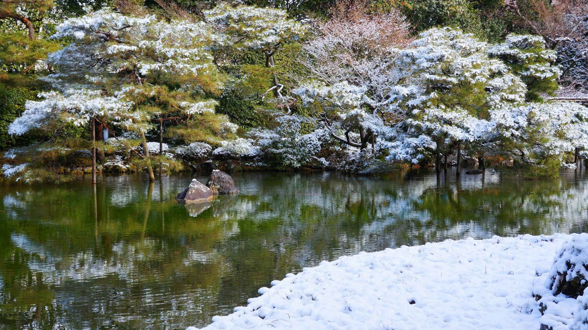 雪の蒼龍池