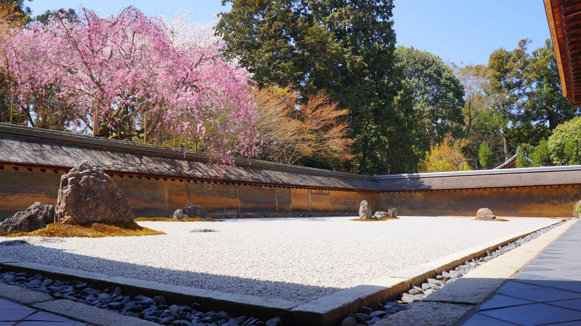 様々な見方ができる龍安寺の春の石庭
