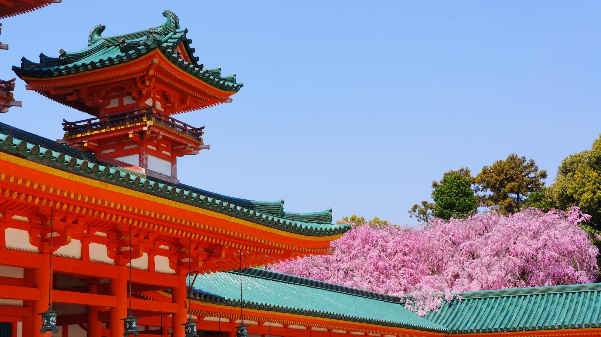 平安神宮の見事な春色の白虎楼