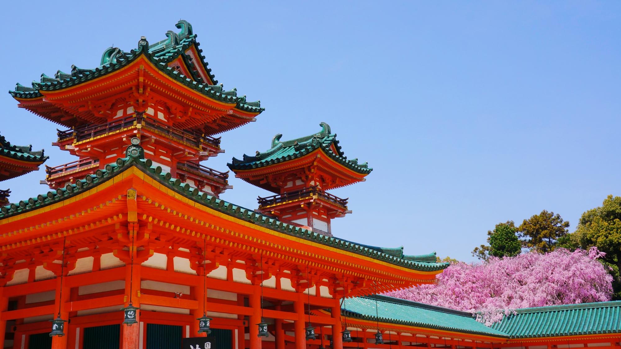 雅な色合いの楼閣に降り注ぐ華やかな桜