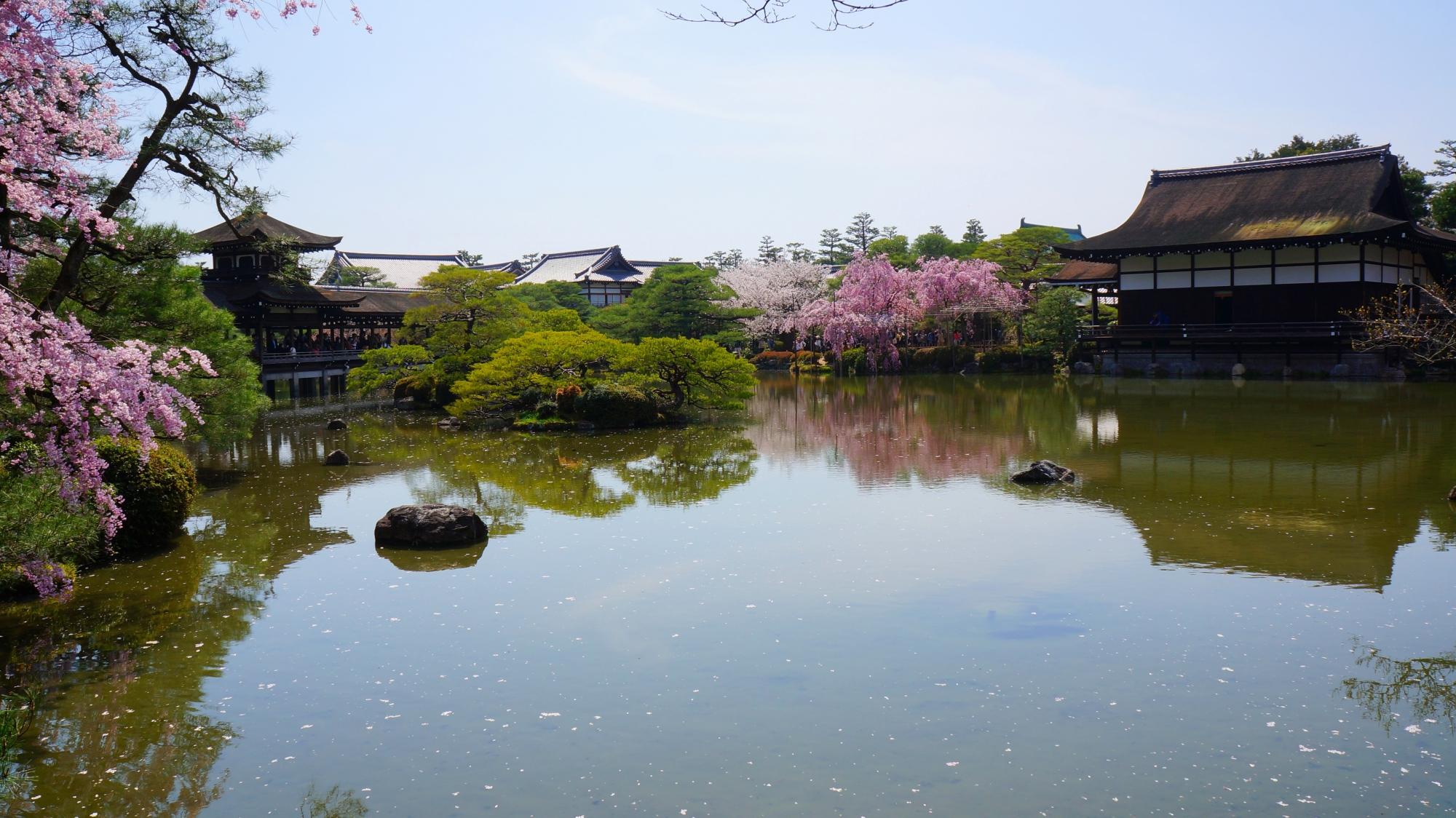 泰平閣と尚美館と桜