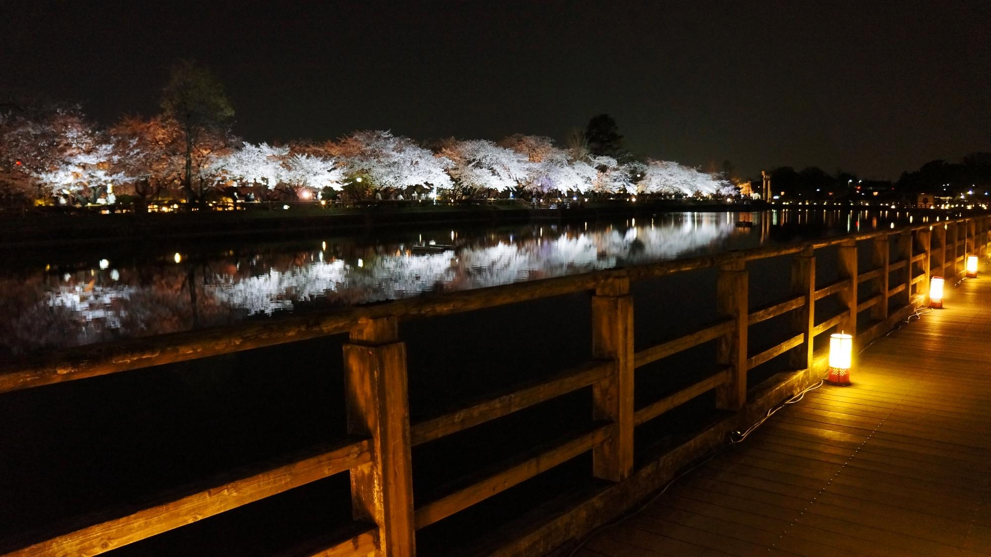 橋のライトアップと相まって幻想的な雰囲気が漂う長岡天満宮