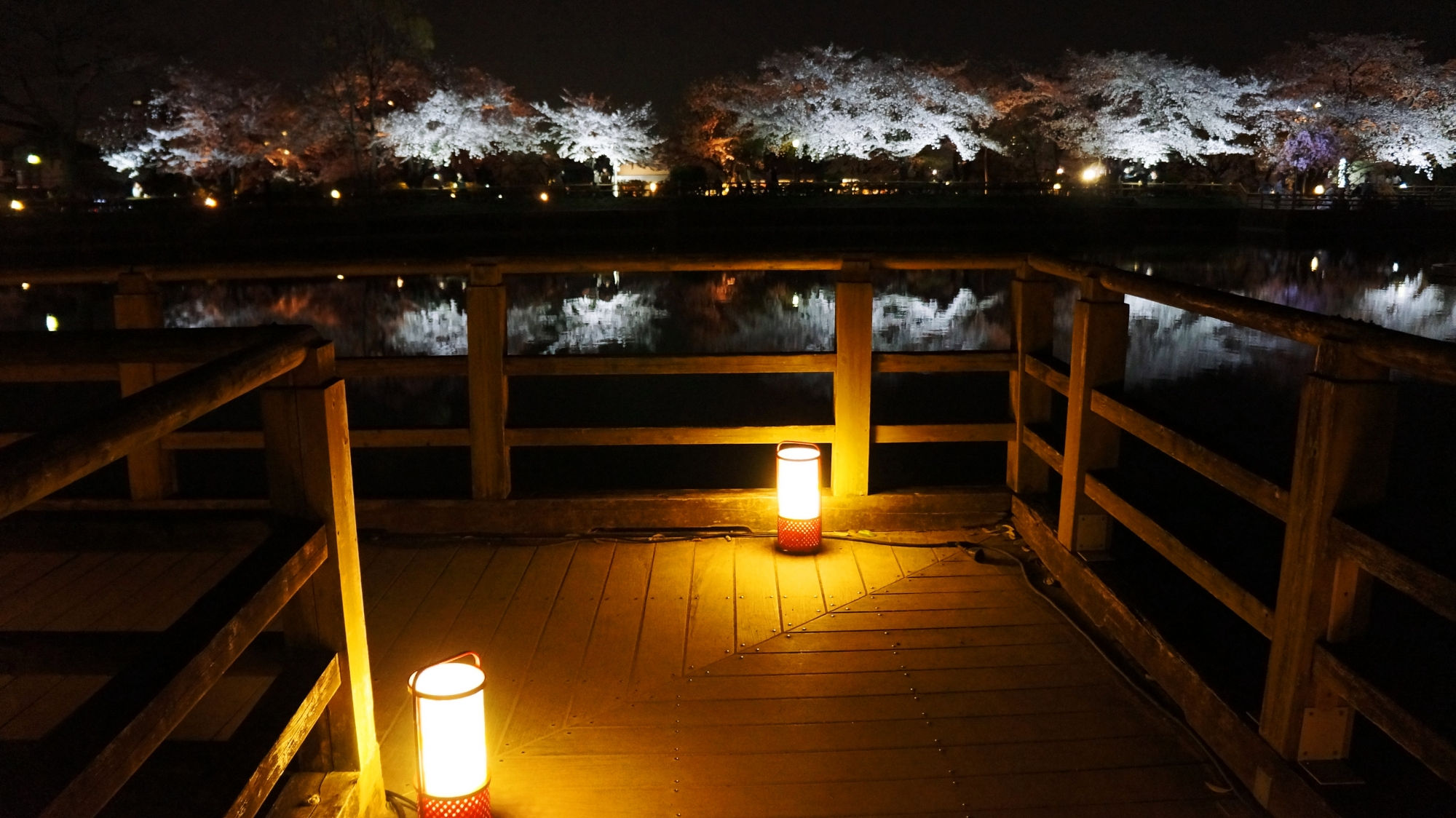 夜桜が楽しめるライトアップされた木の橋の通路