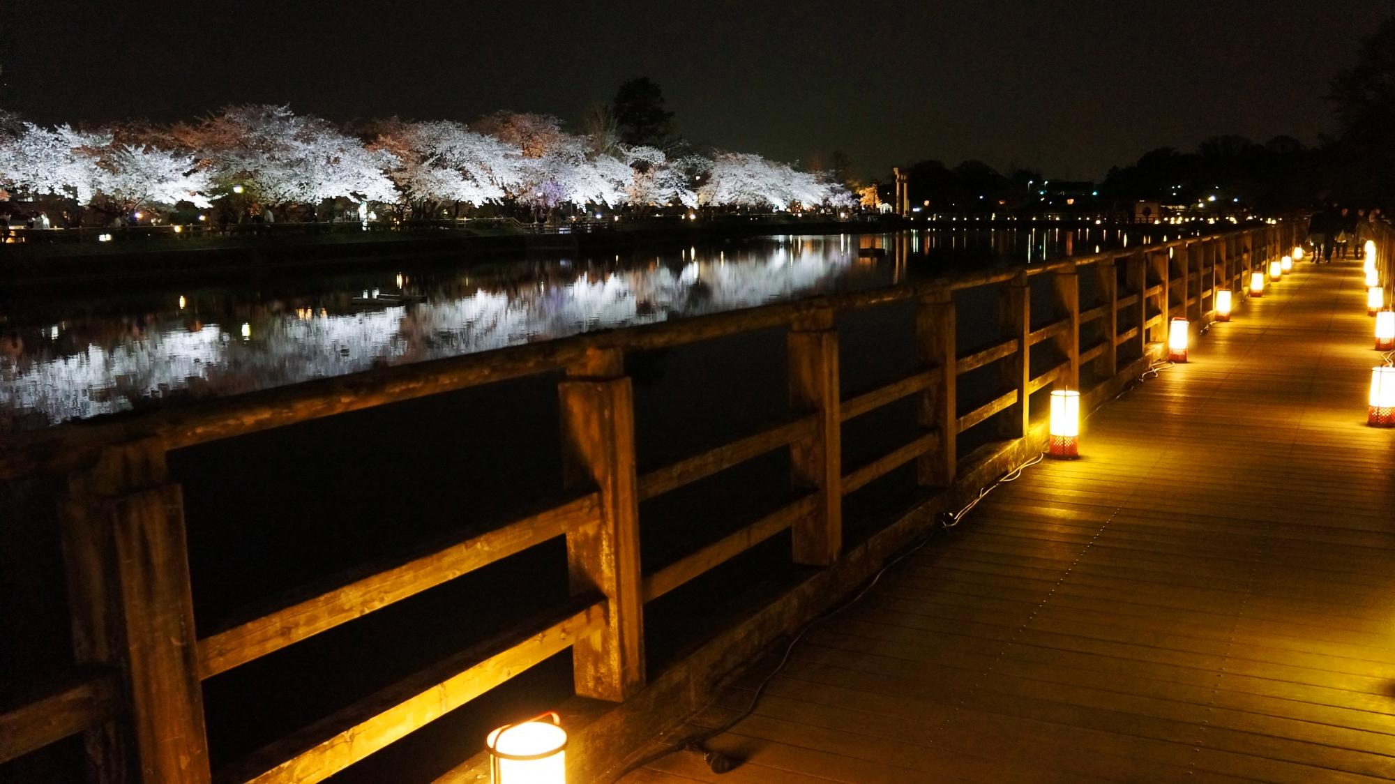 八条ヶ池の西側に架かる木の橋の水上の通路