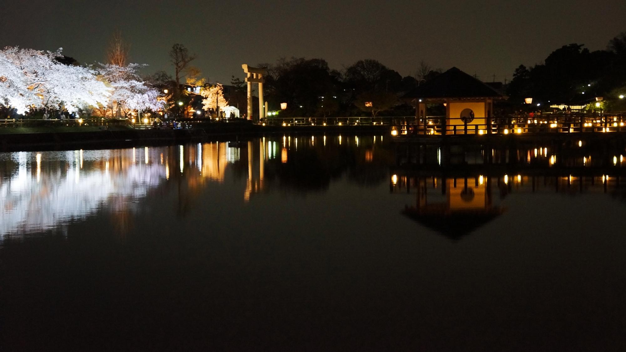 水上の六角舎と大鳥居と夜桜