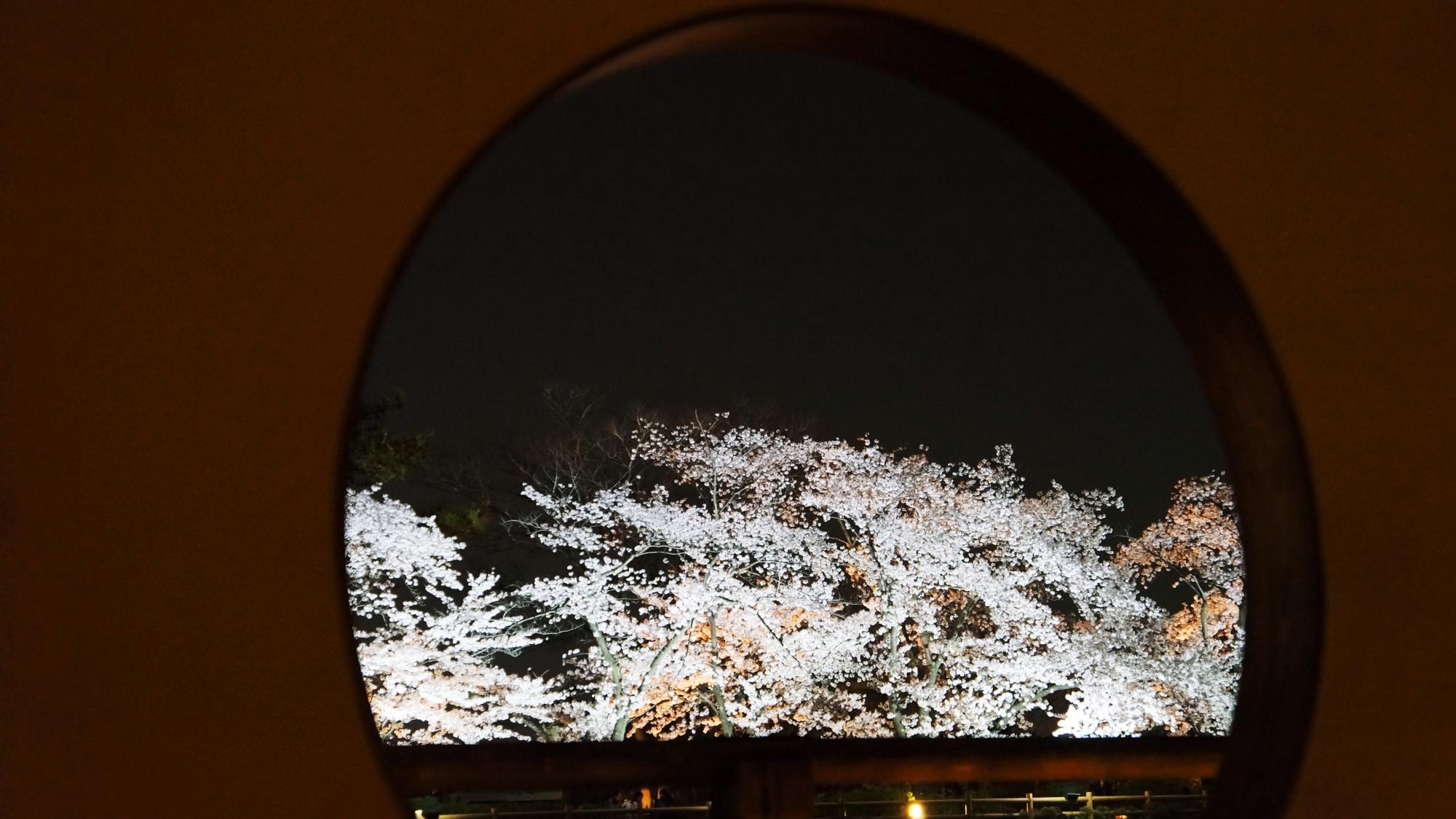 丸窓の中で咲き乱れる夜桜