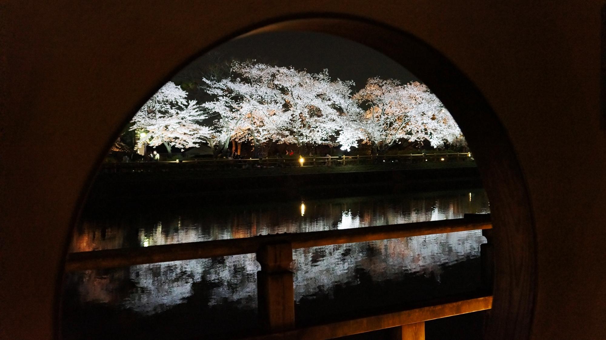 丸い窓から見える幻想的な夜桜と水鏡
