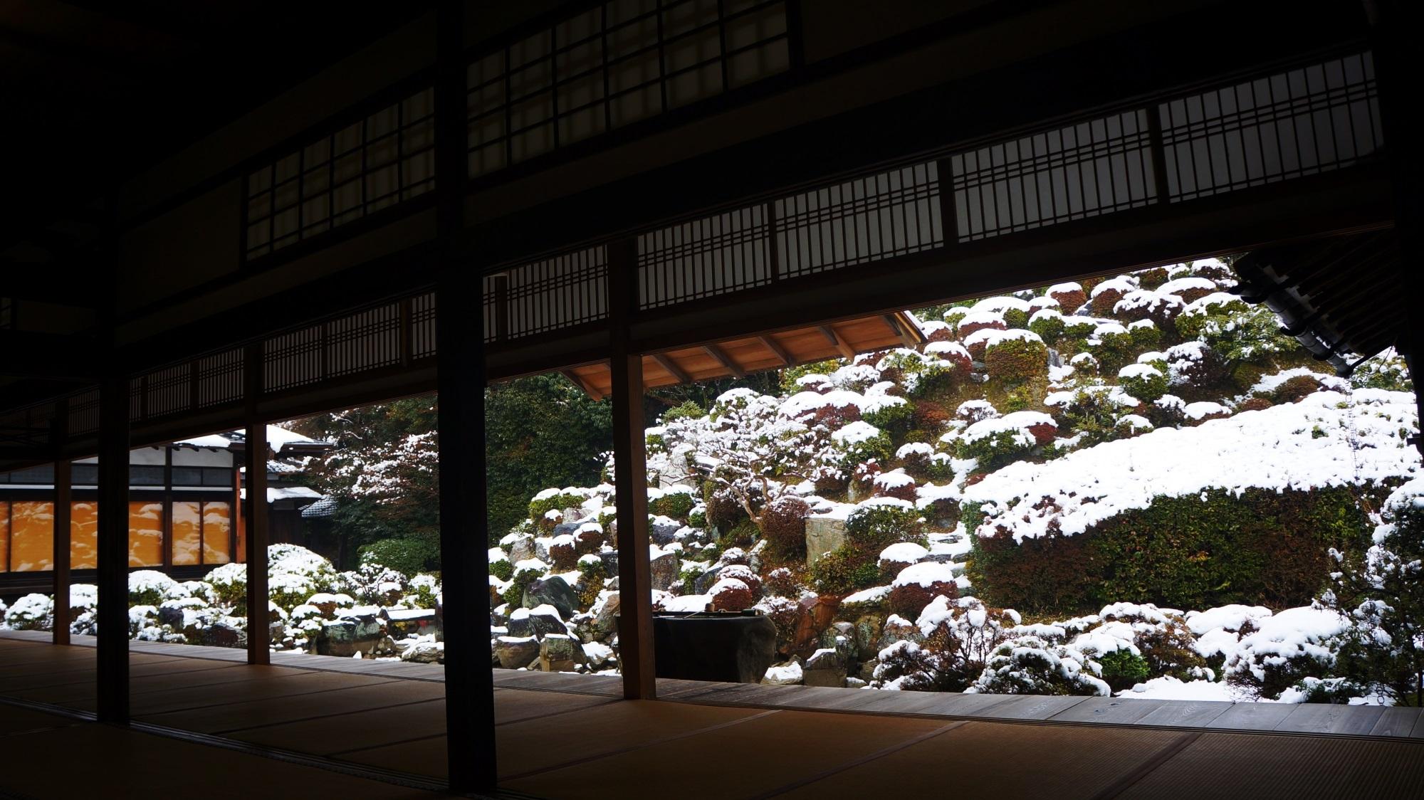 智積院 雪 名勝庭園の冬景色と梅の花