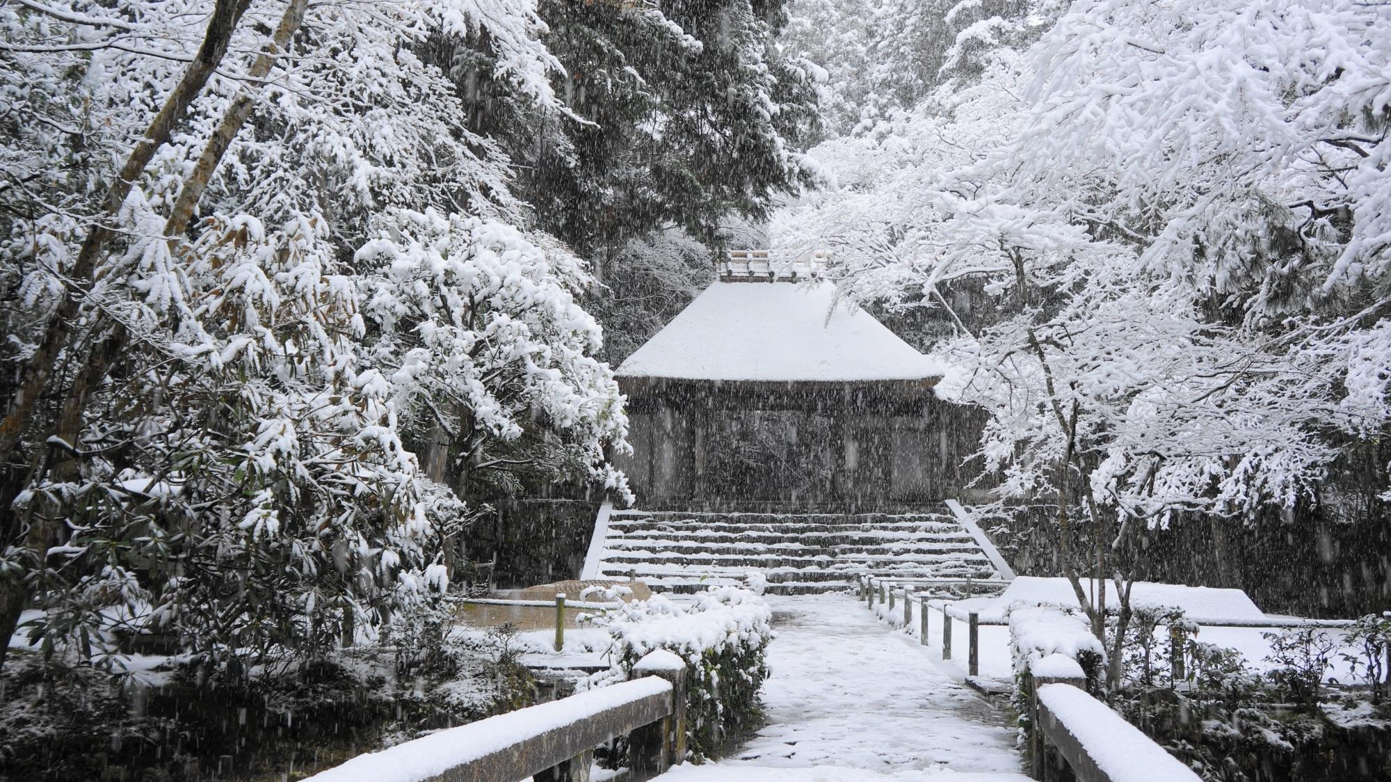 法然院 雪 風情ありすぎる冬景色