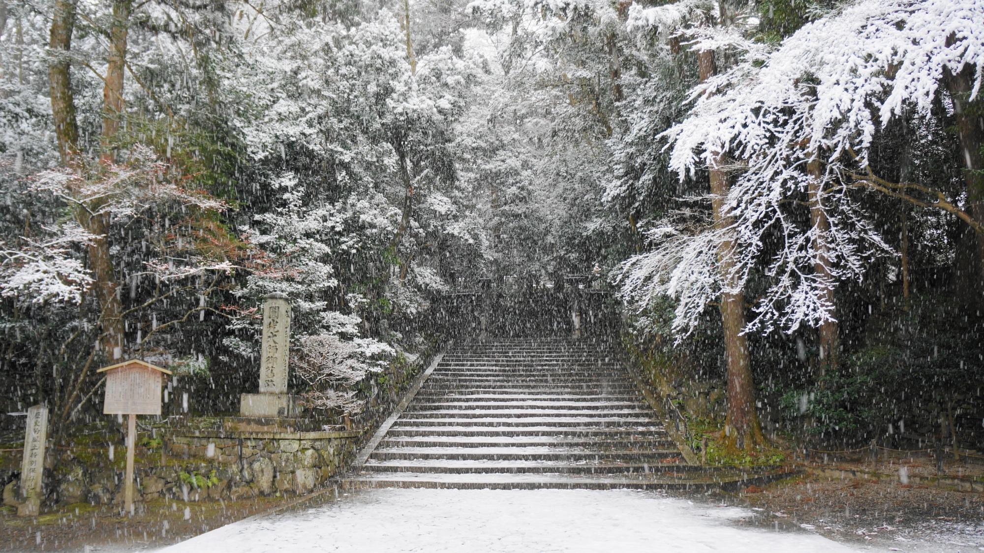法然院の入り口の石段の雪景色