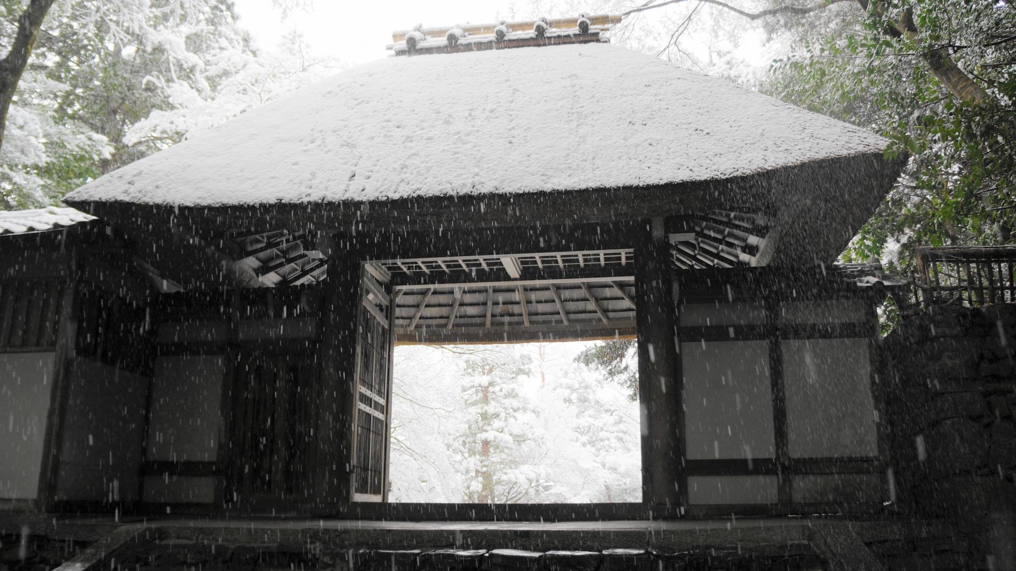 奥には白い境内が見える茅葺屋根の山門