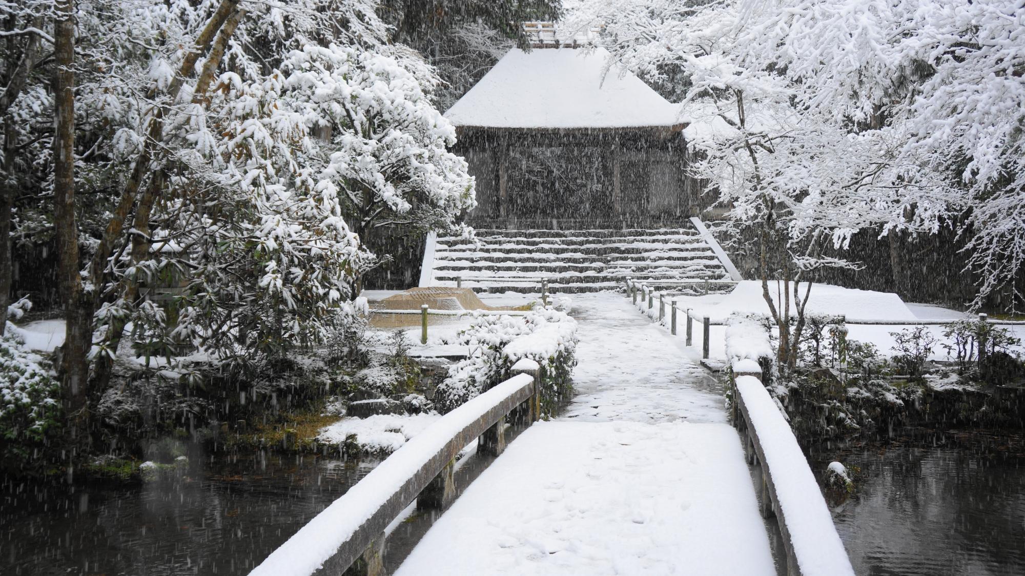 法然院の白銀につつまれた境内と雪の山門