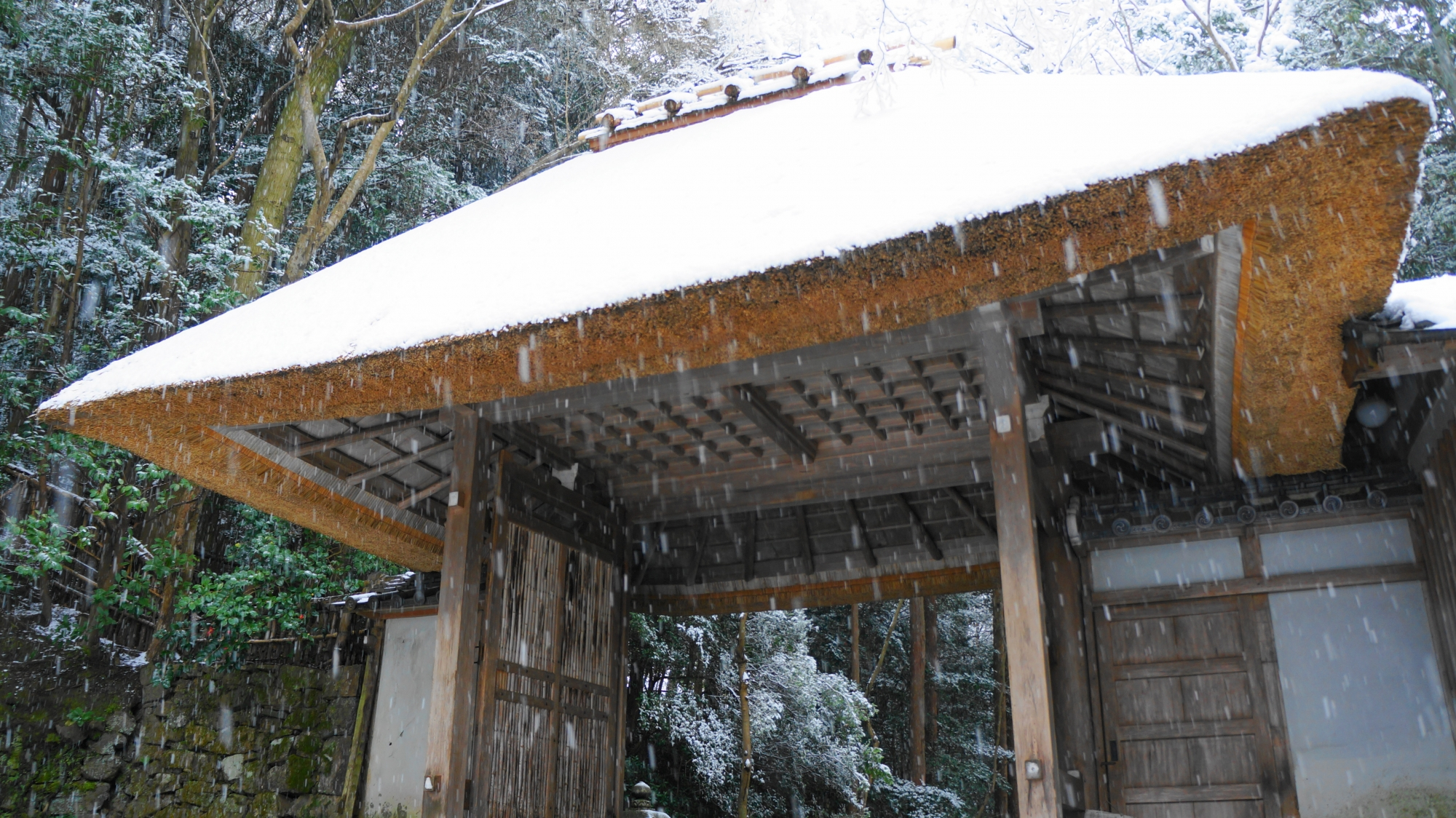 やや下から眺めた雪の山門