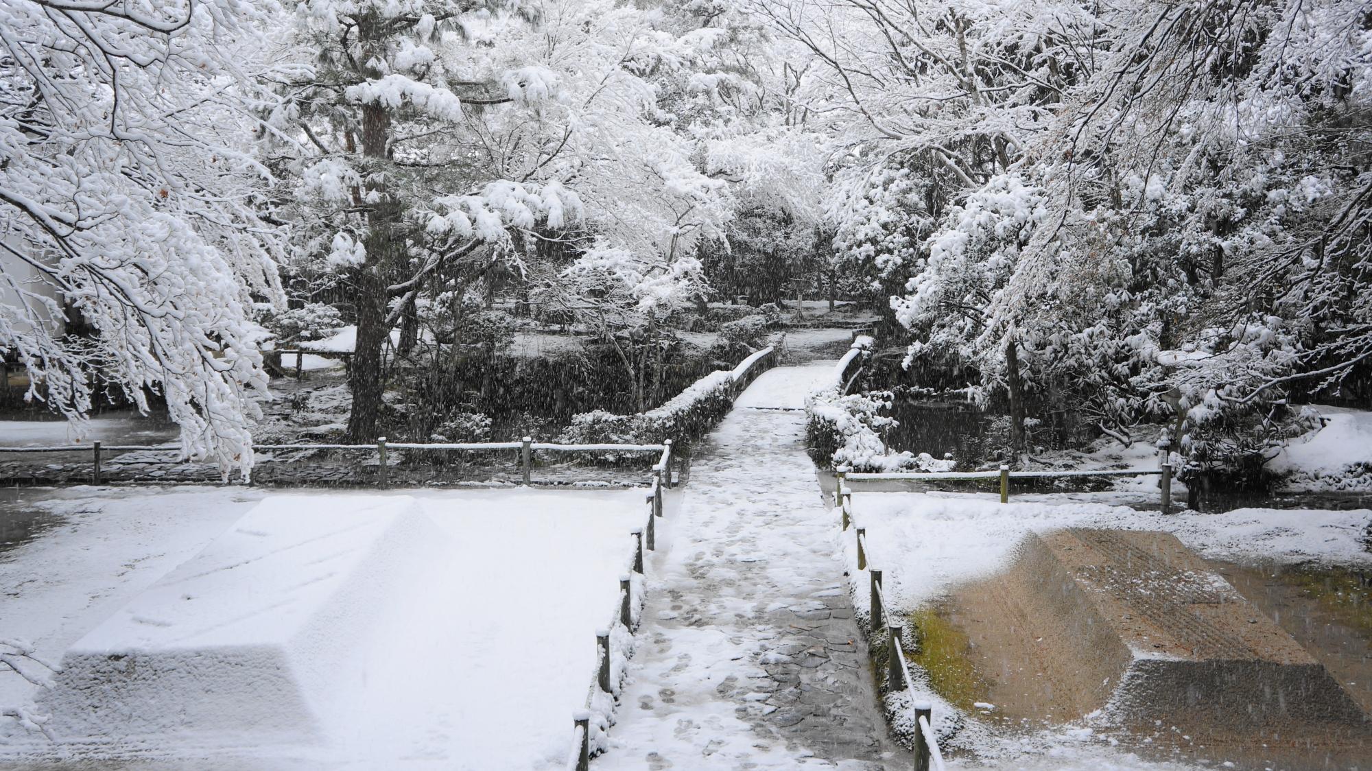 芸術的で華やかな雪の花