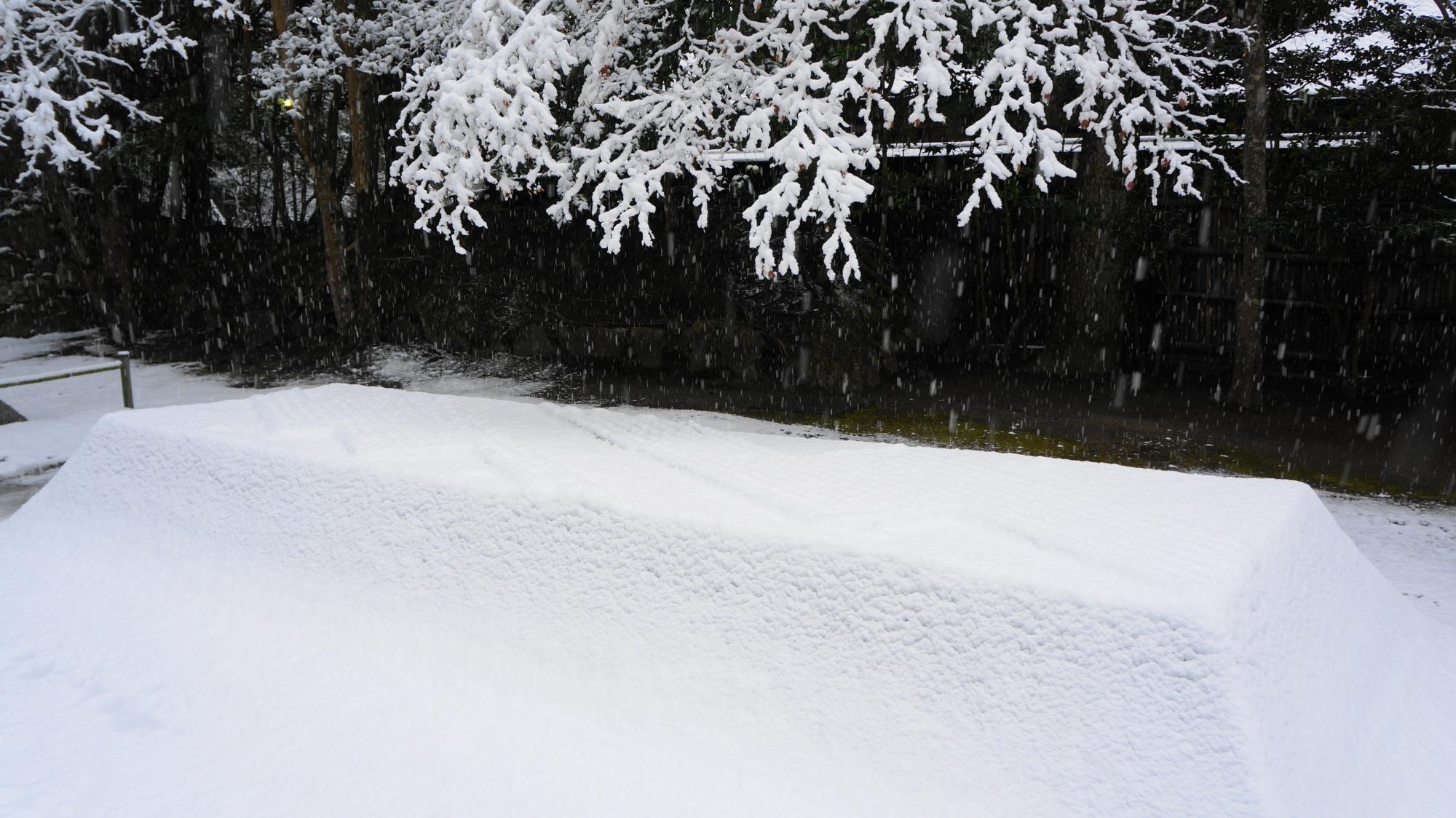 幻想的な白砂壇ともみじの雪景色