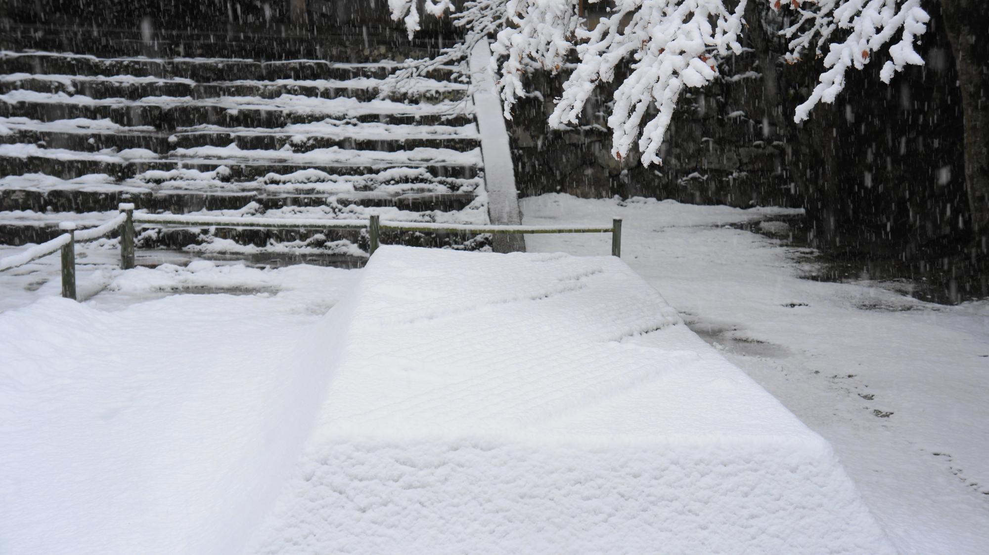 法然院の風情と美しさを兼ね備えた冬景色