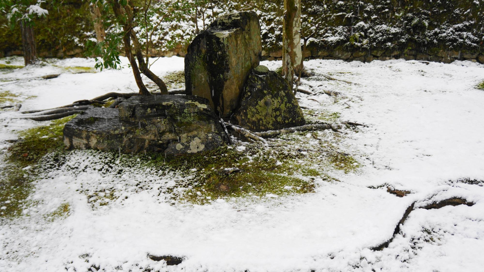 雪の綺麗なほのかな境目