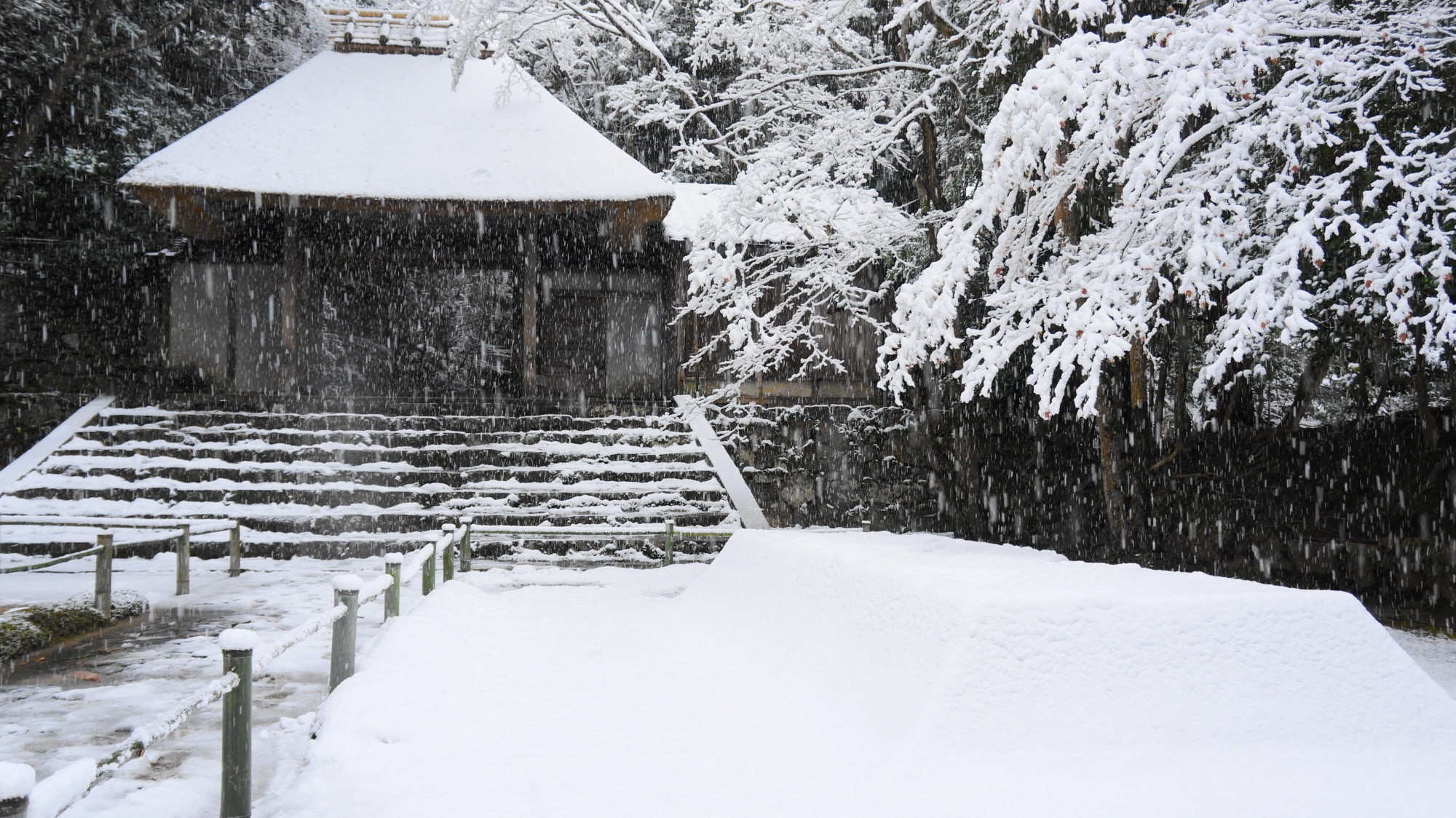 華やかで豪快な雪景色