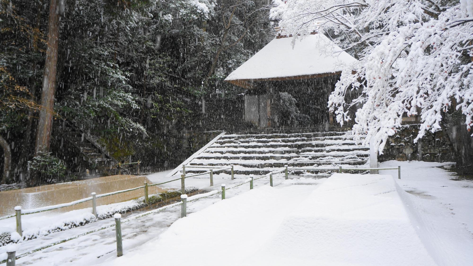 高画質 写真 法然院 雪景色