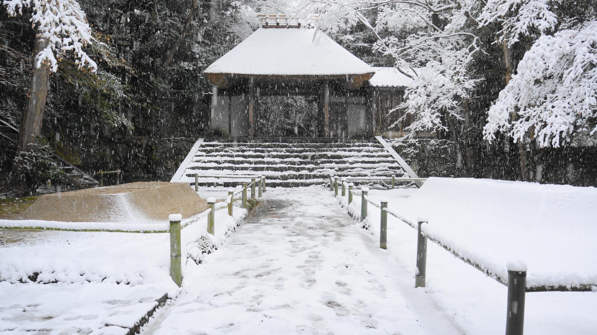素晴らしい法然院の雪景色