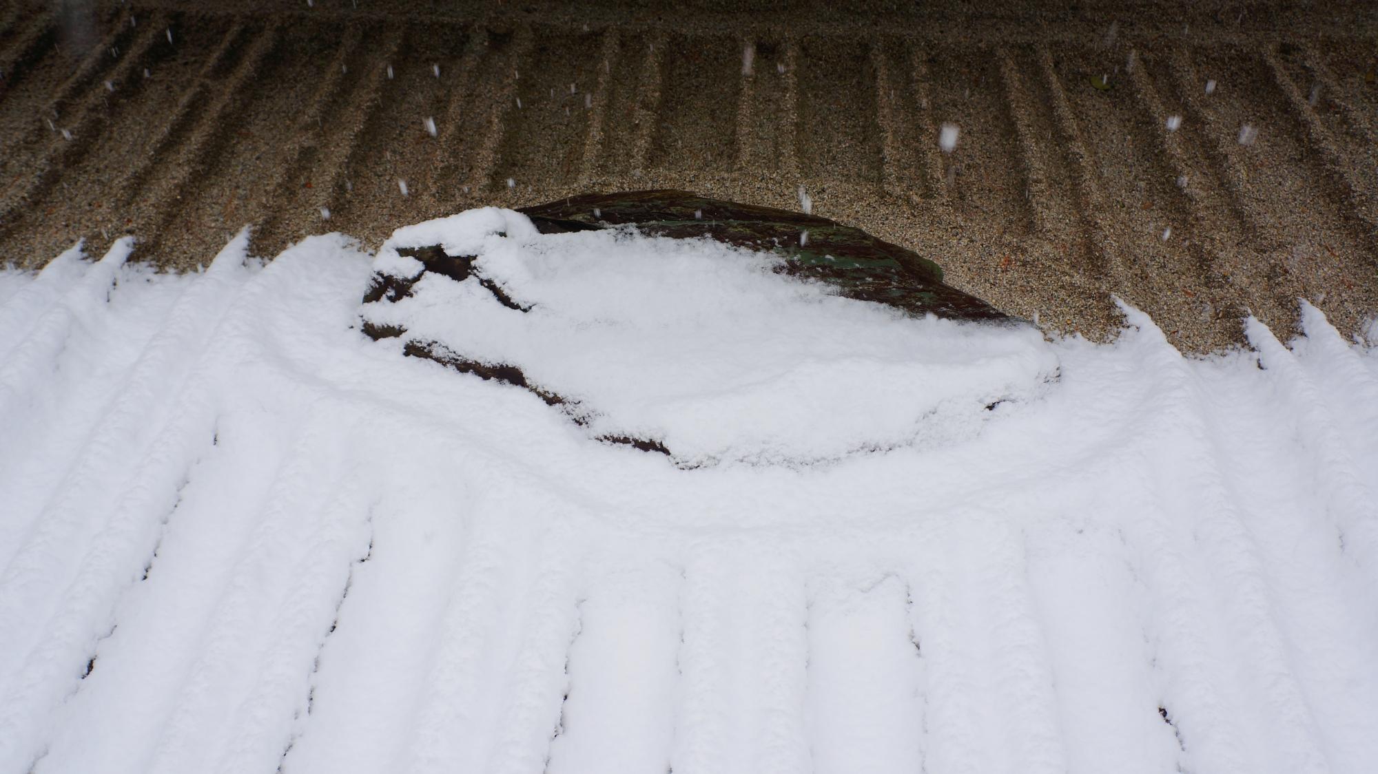 雪の積もっている部分と積もっていない部分の分かれ目