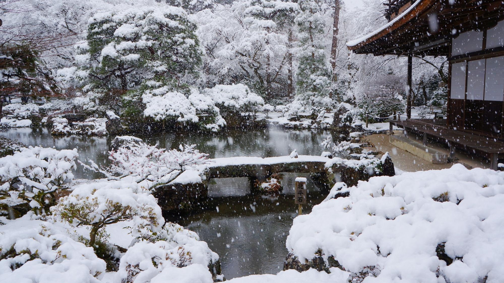 真っ白に雪化粧した銀閣寺