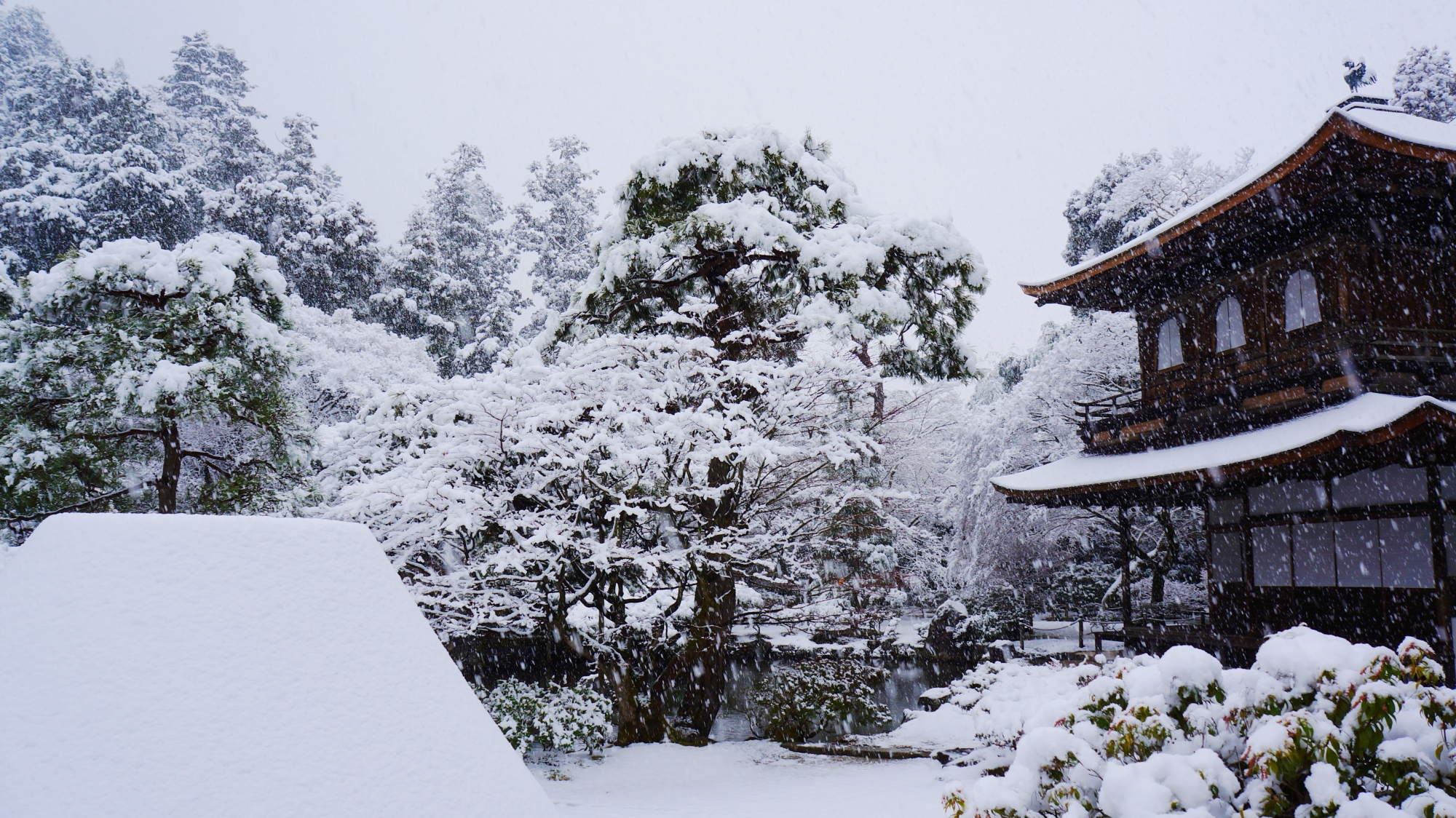 雪の向月台と雪の銀閣