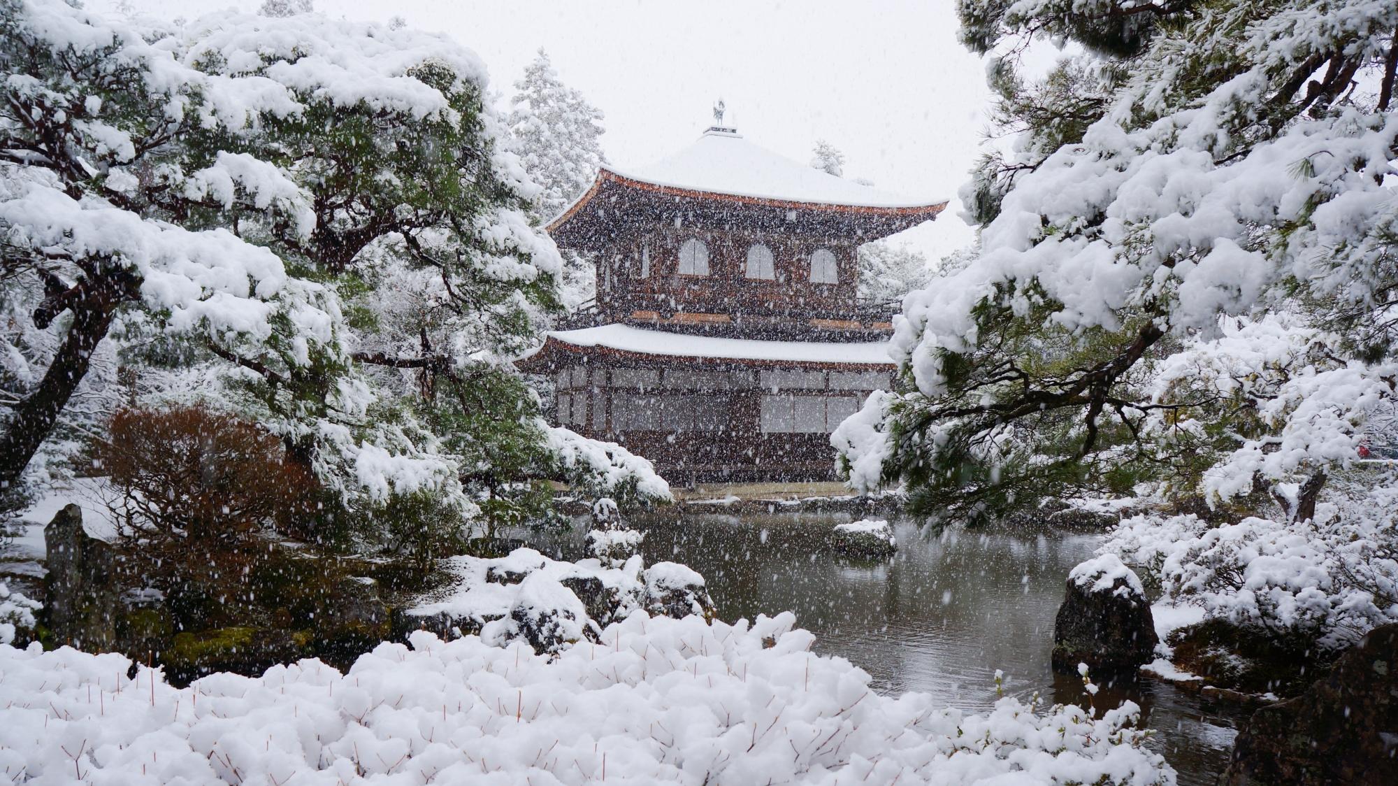 錦鏡池越しの雪の銀閣