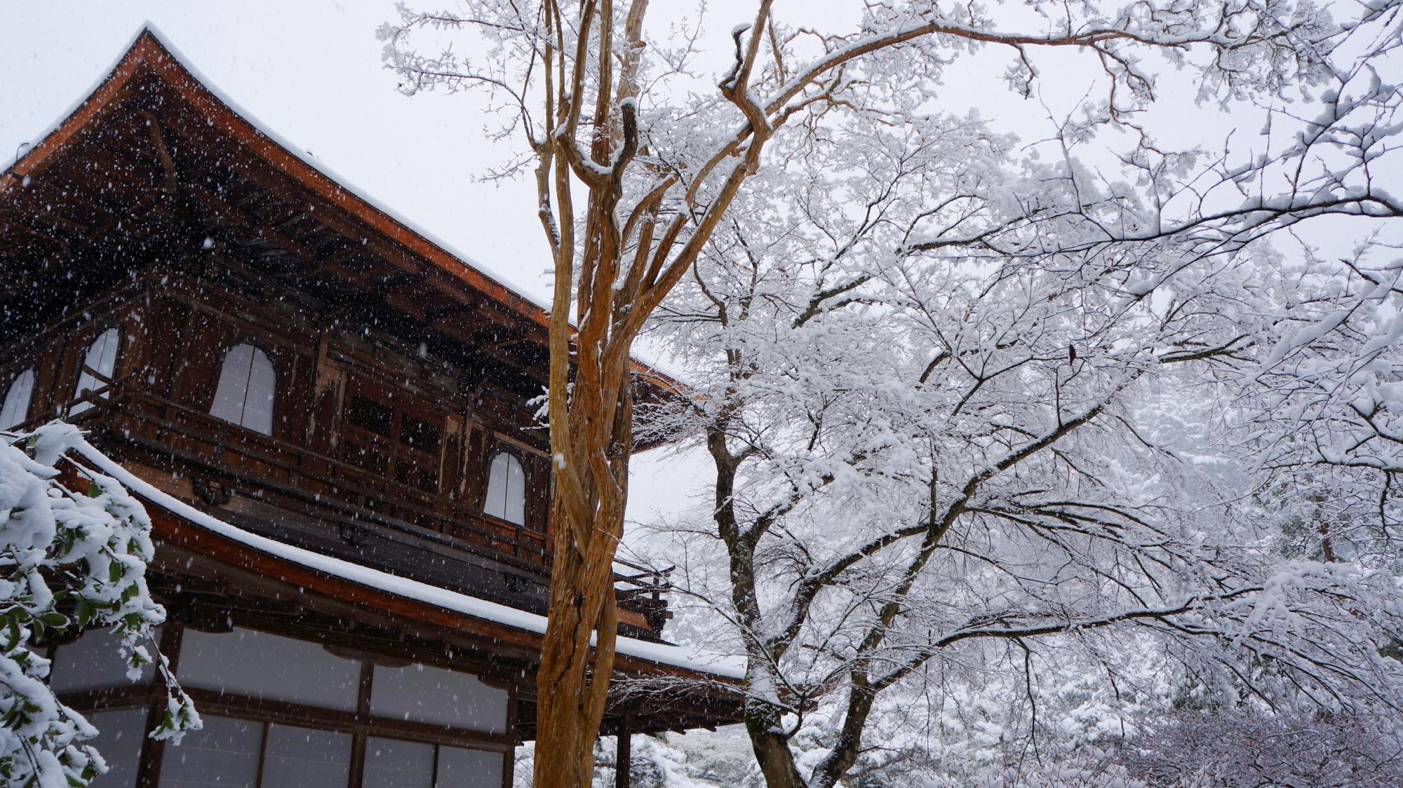 高画質 写真 銀閣寺 雪景色