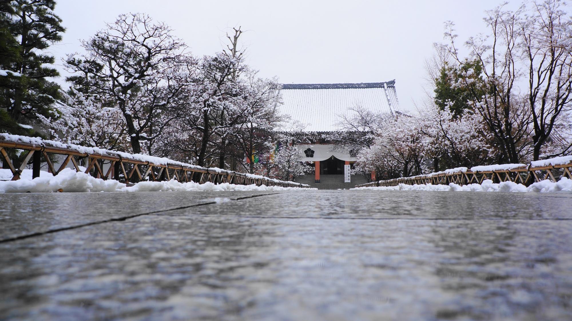 濡れた石畳の参道と銀世界に佇む雪の金堂