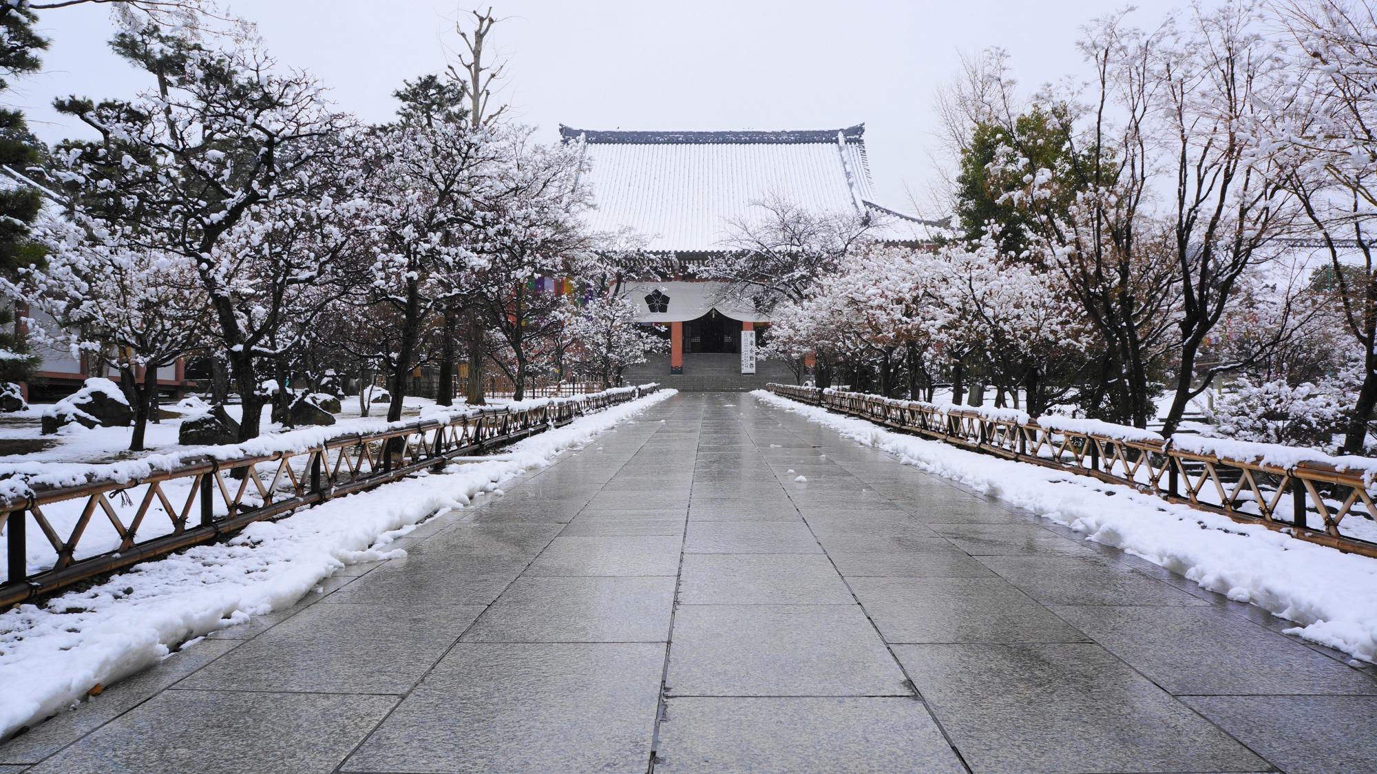 参道と金堂(本堂)の雪景色