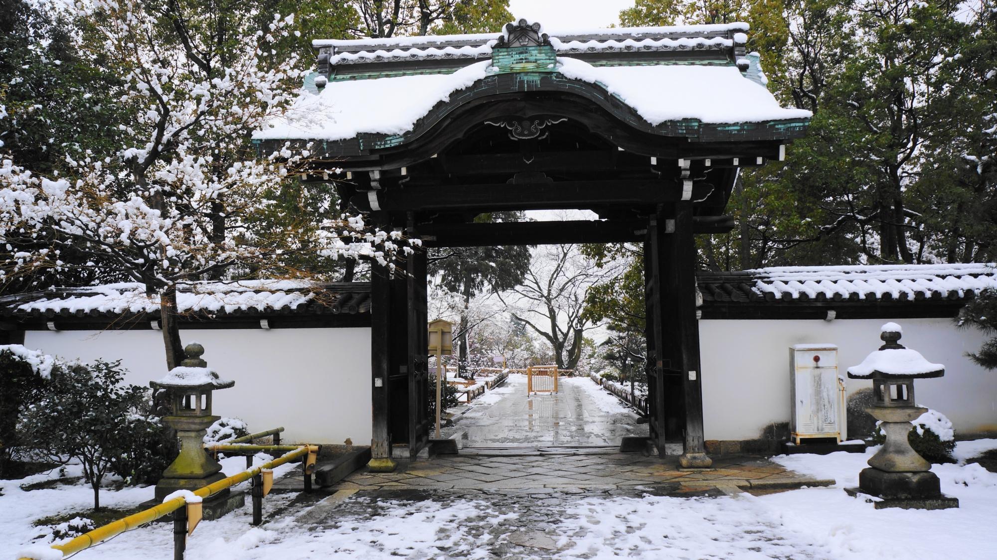 講堂側から眺めた雪の唐門