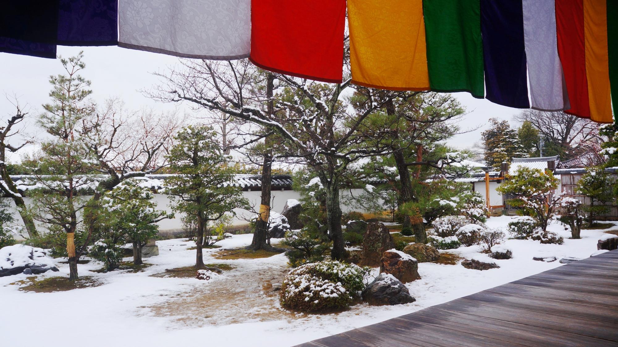 鮮やかな金堂と白い雪の綺麗なコントラスト