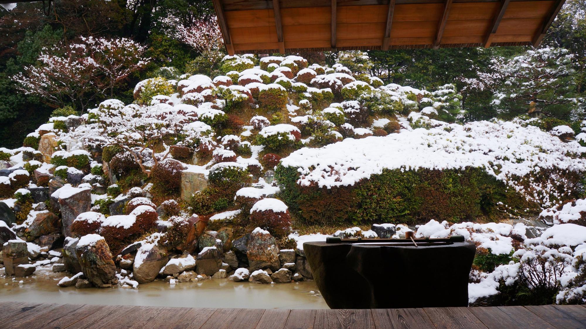 高画質 写真 利休好みの庭 雪景色